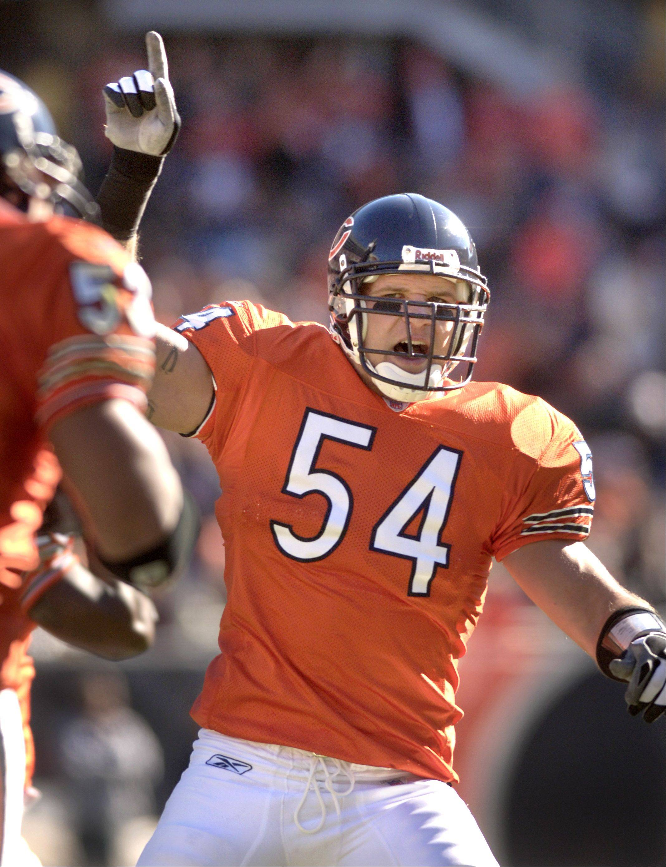Brian Urlacher celebrates after a fumble recovery.