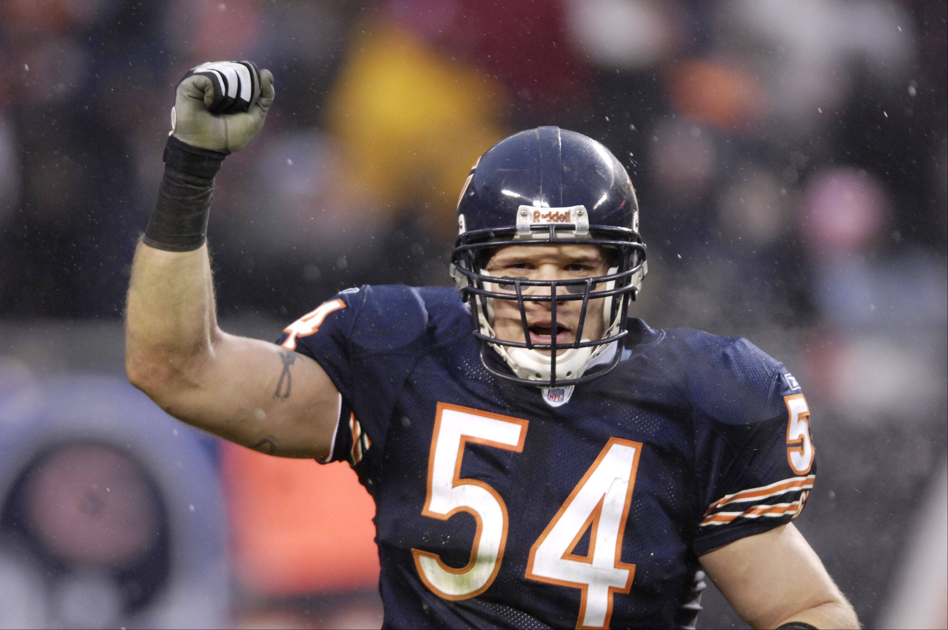 Chicago Bears linebacker Brian Urlacher celebrates a safety at the NFC Championship game .