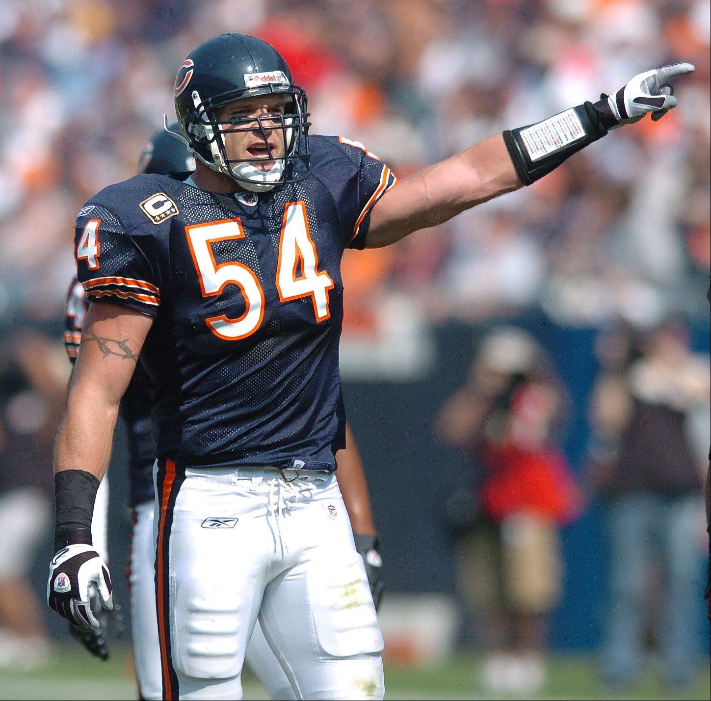 Bears linebacker Brian Urlacher directs the defense here, but he won't be anymore, at least not for the Bears. Who will take his place at Soldier Field?