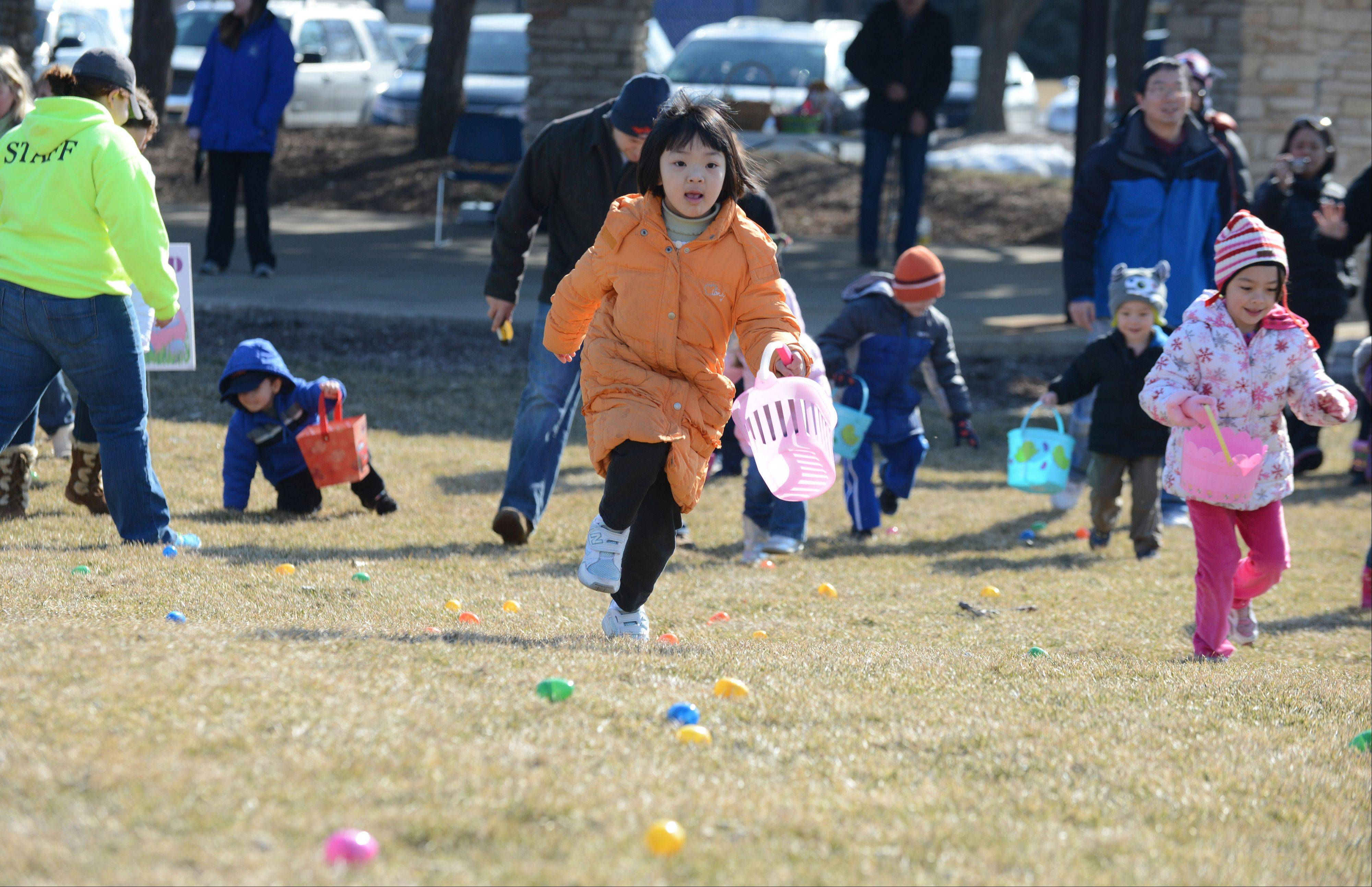 Jane Zhao, 5, of Lisle, sprints from the line with high hopes of getting lots of eggs during the Lisle Park District's annual Easter egg hunt.