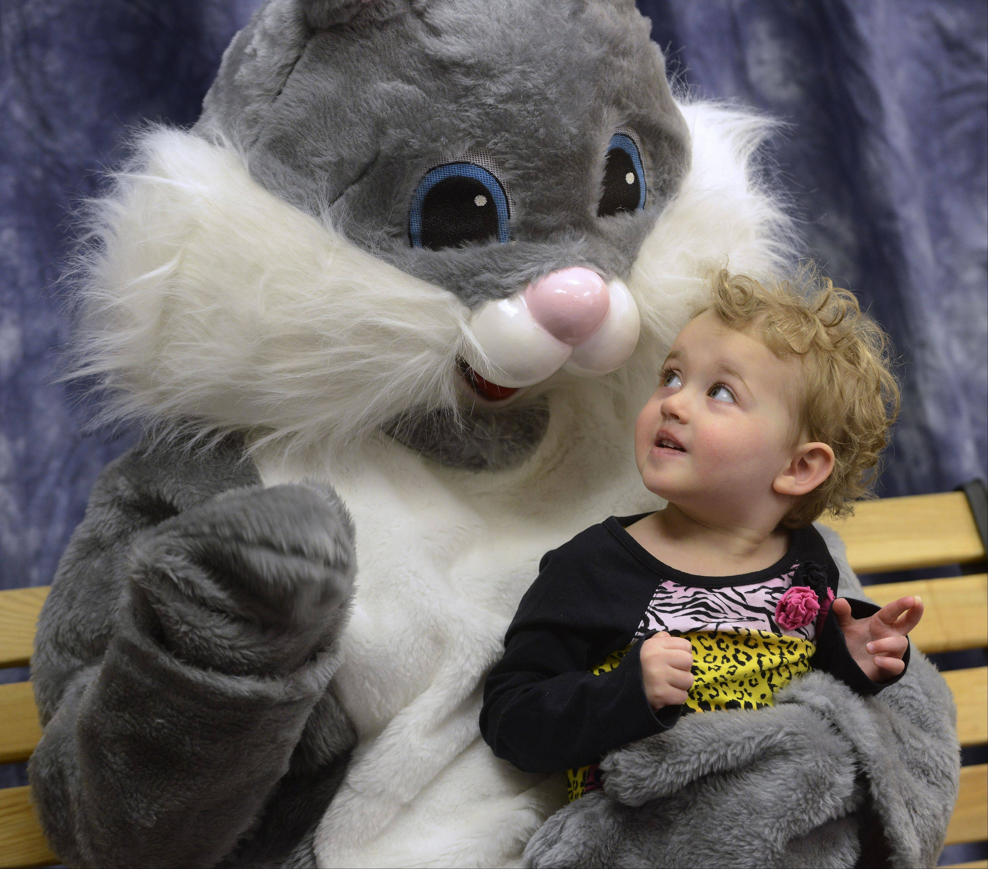 Addison Footlik, 2-1/2, of Vernon Hills, visits with the Easter Bunny during the Hoppin' Holiday Hunt at the Vernon Hills Park District's Sullivan Community Center Saturday.