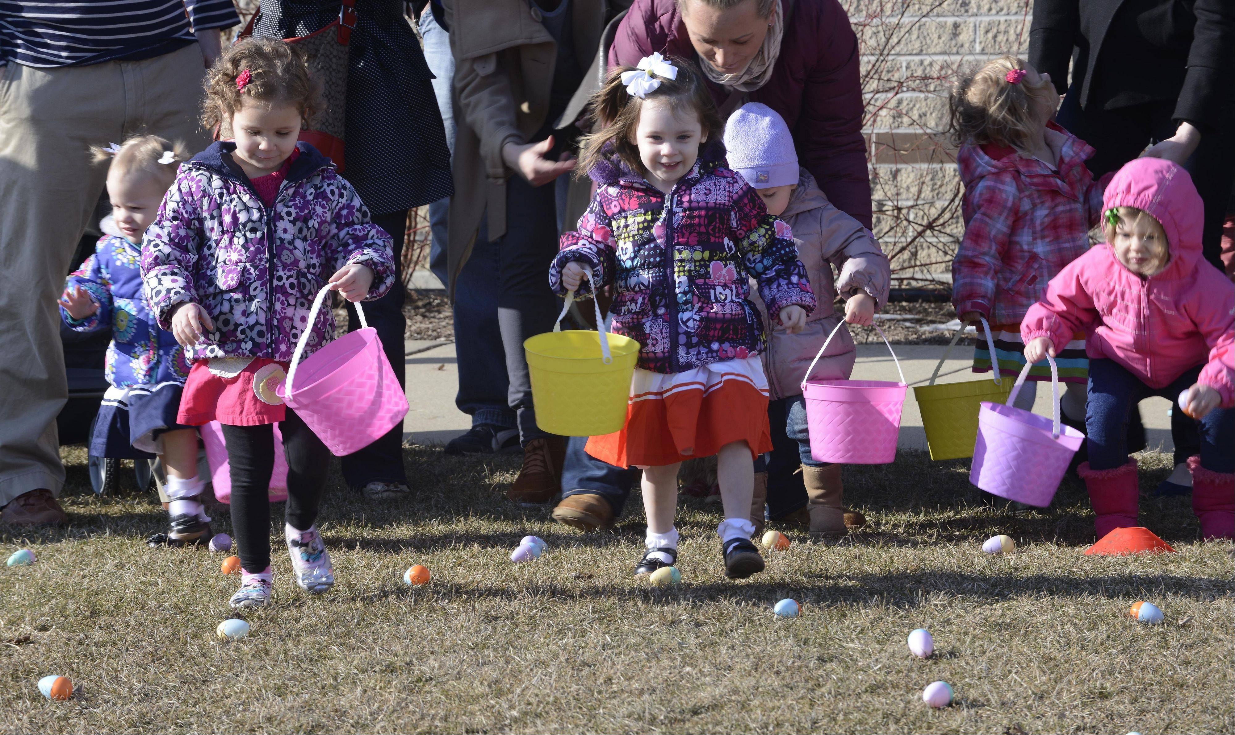 Eleanor Heintz, left, and Campbell Fenton, middle, both age 3 and of Vernon Hills, run for Easter Eggs during the Hoppin' Holiday Hunt at the Vernon Hills Park District's Sullivan Community Center.