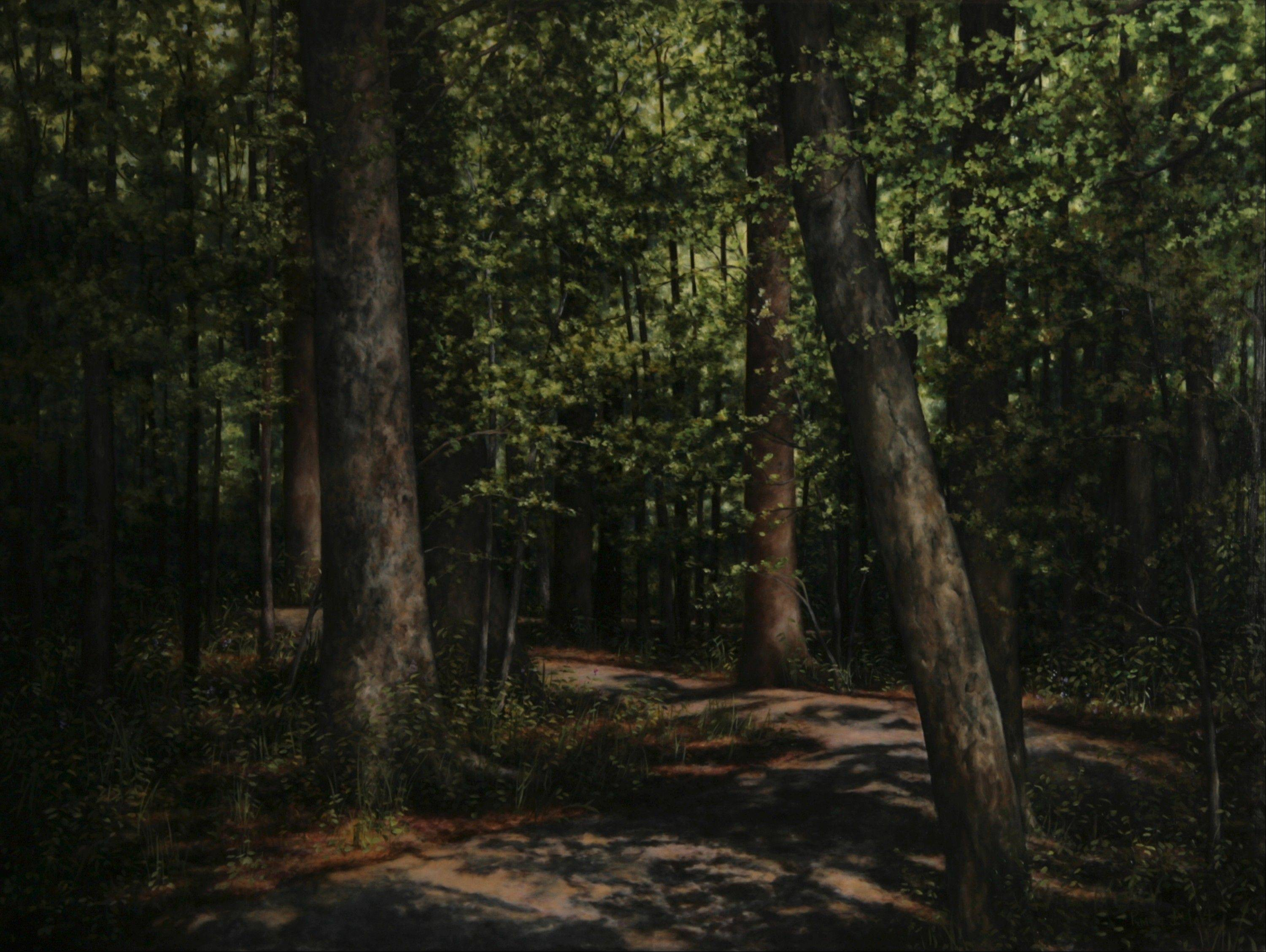 "Pamela Hart's paintings make up the exhibit ""Through New Eyes"" at North Central College's Schoenherr Gallery in Naperville."