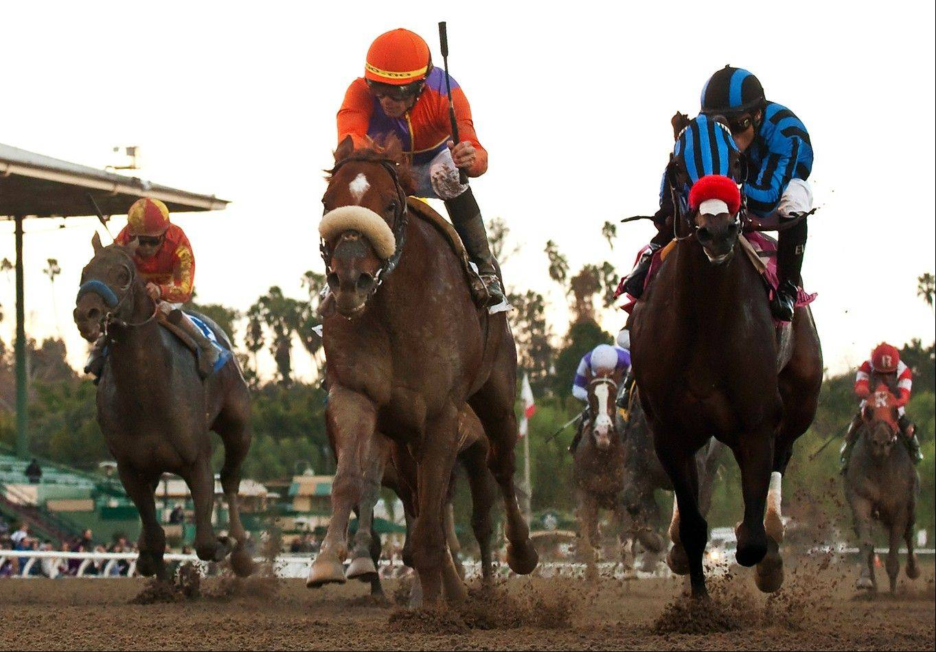 At right, Private Zone and jockey Martin Pedroza pound down the stretch in the $300,000 Malibu Stakes last December at Santa Anita Park. Spendthrift Farm's Jimmy Creed and jockey Garrett Gomez, center, won the race.