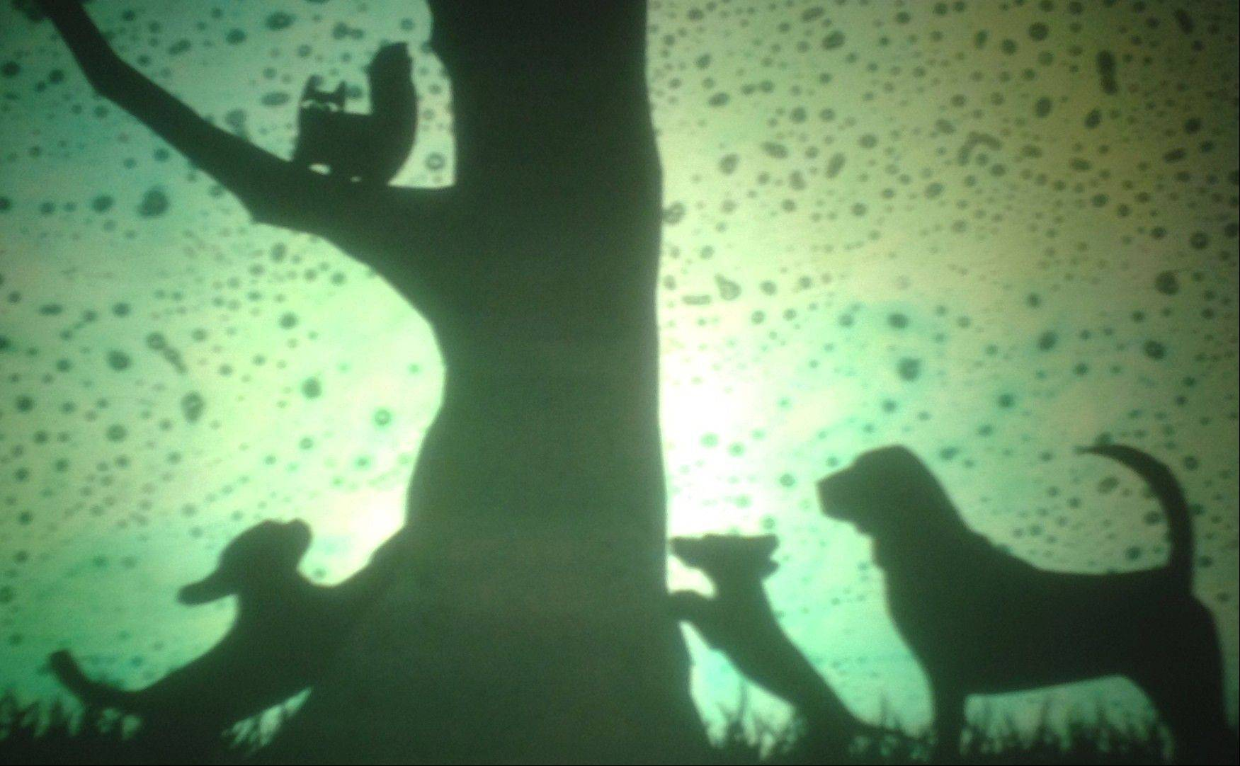 "A trio of dogs and the cat they cornered in The Sea Beast Puppet Company's scripted shadow play ""Tailypo."""