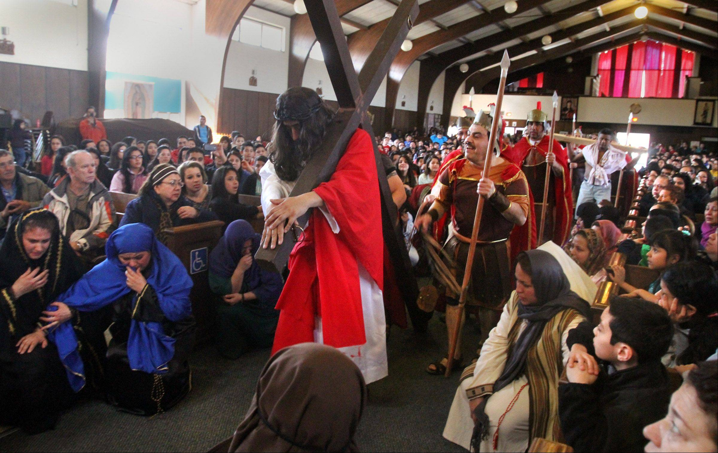 "Jesus played by Miguel Angel Correa of Mundelein drags a cross through Stanta Maria del Popolo Catholic Church as he is whipped by guards during ""Way of the Cross"" in Mundelein on Friday."