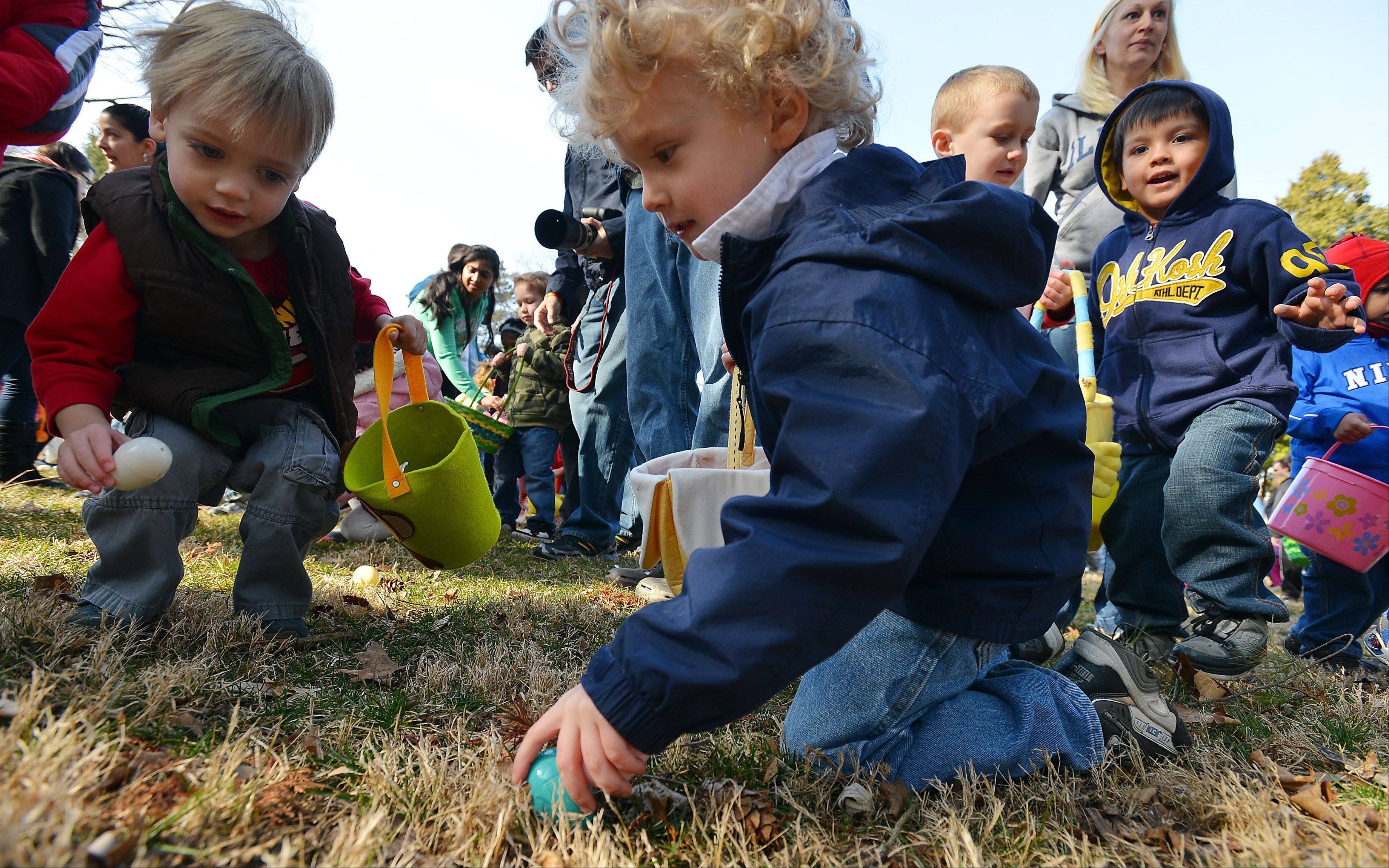 In a mass of humanity that was uncontrolled chaos Freddy Eichorn,4, of Arlington Heights manages to find an Easter egg in the big hunt held at the Gary Morava Recreation Center in Prospect Heights on Saturday.