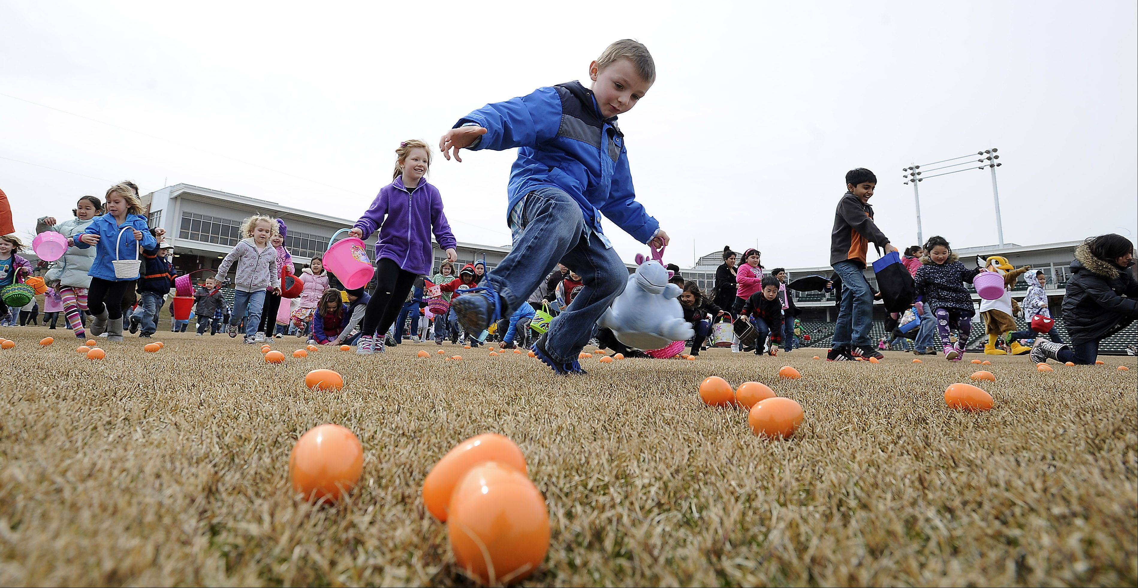 Logan Entzminger,6, of Bartlett puts on the brakes as he rushes to scoop up as many Easter eggs as possible, he got only six in the mad rush at the Schaumburg Boomers 2nd annual Easter egg hunt on Saturday.