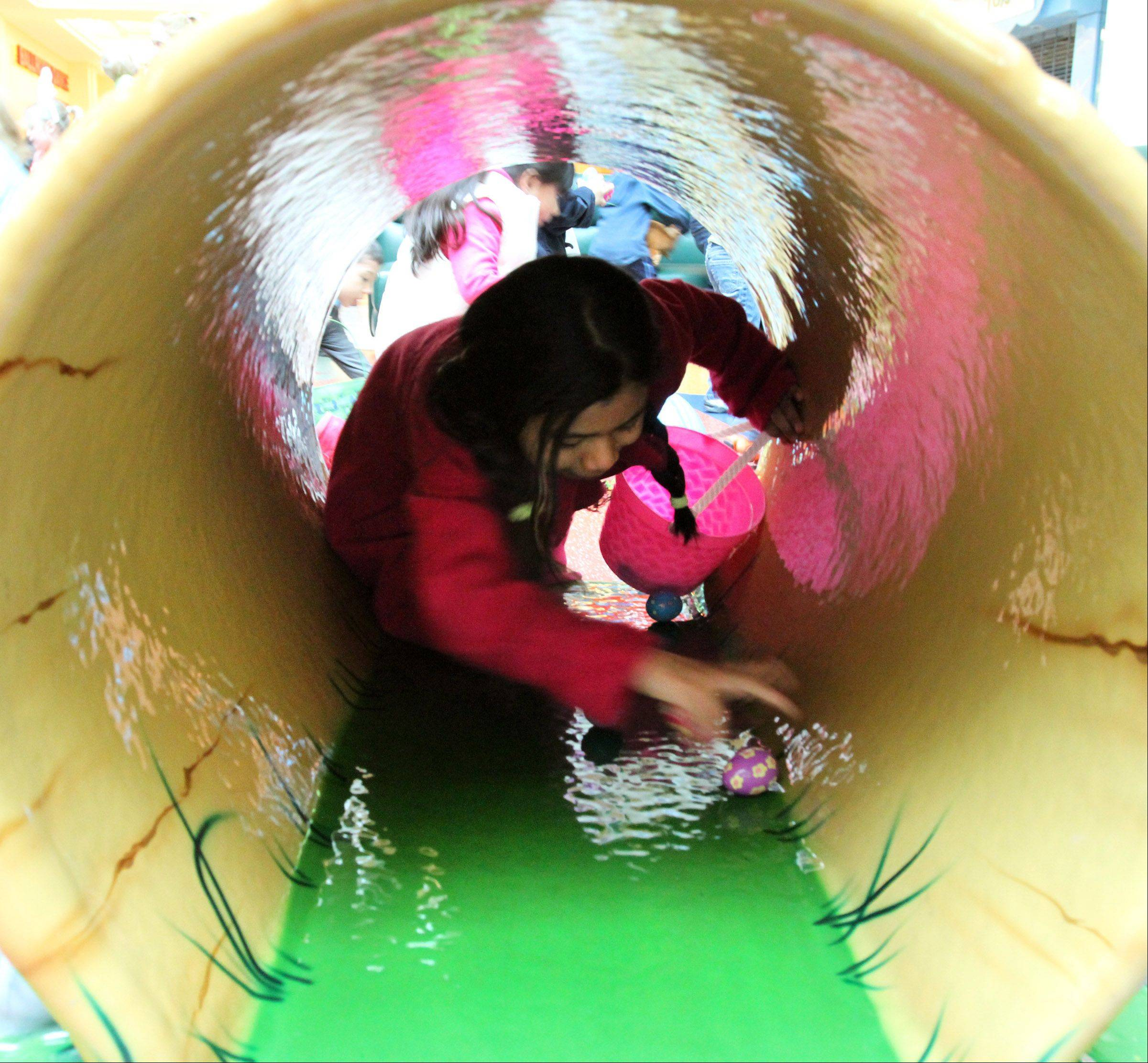 Alejandia Guzman, 8, of Mundeleinm, finds an egg inside of a tunnel in the play-town area at the annual Easter egg hunt at Westfield Hawthorn Mall in Vernon Hills on Saturday. The mallwide egg hunt event included petting zoo, face-painting, doughnuts, and music.