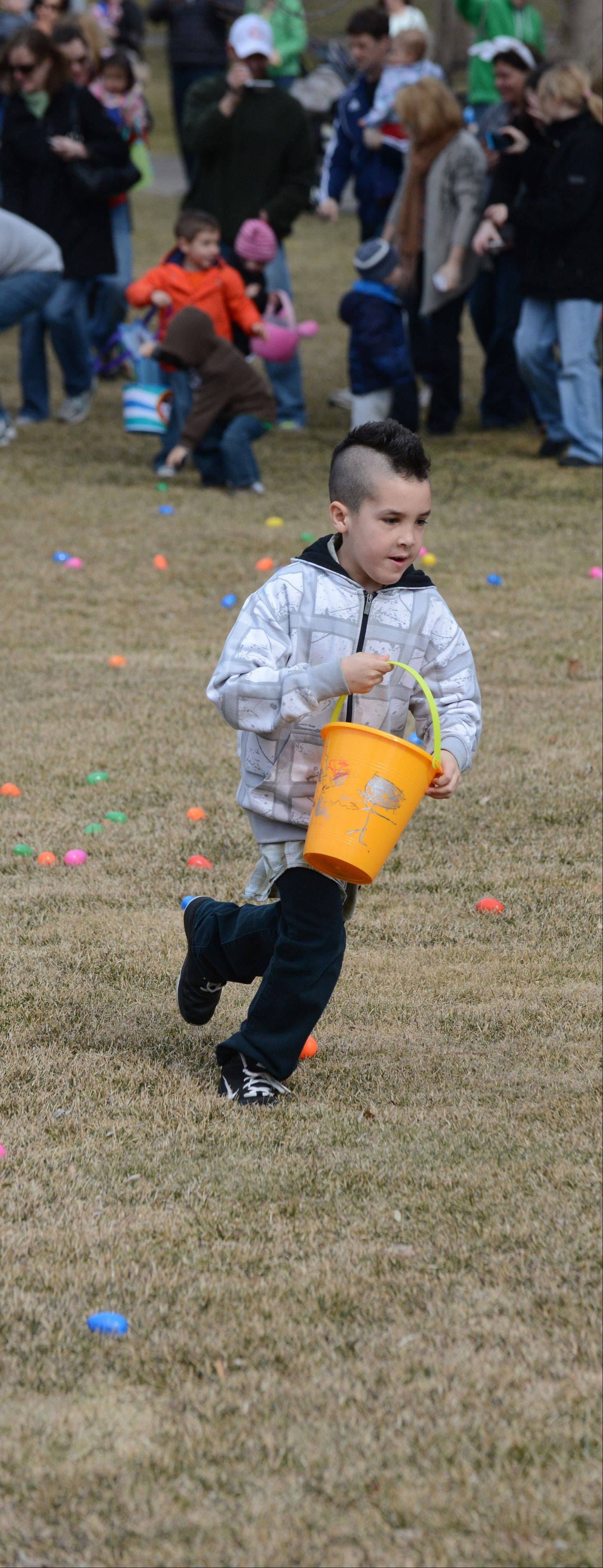 KJ Dawson, 8, of Wheaton hunted for colored eggs on the lawn of the Robert R. McCormick Museum at Cantigny Park in Wheaton Saturday. The Easter Bunny and a petting zoo were also there for the children to visit.