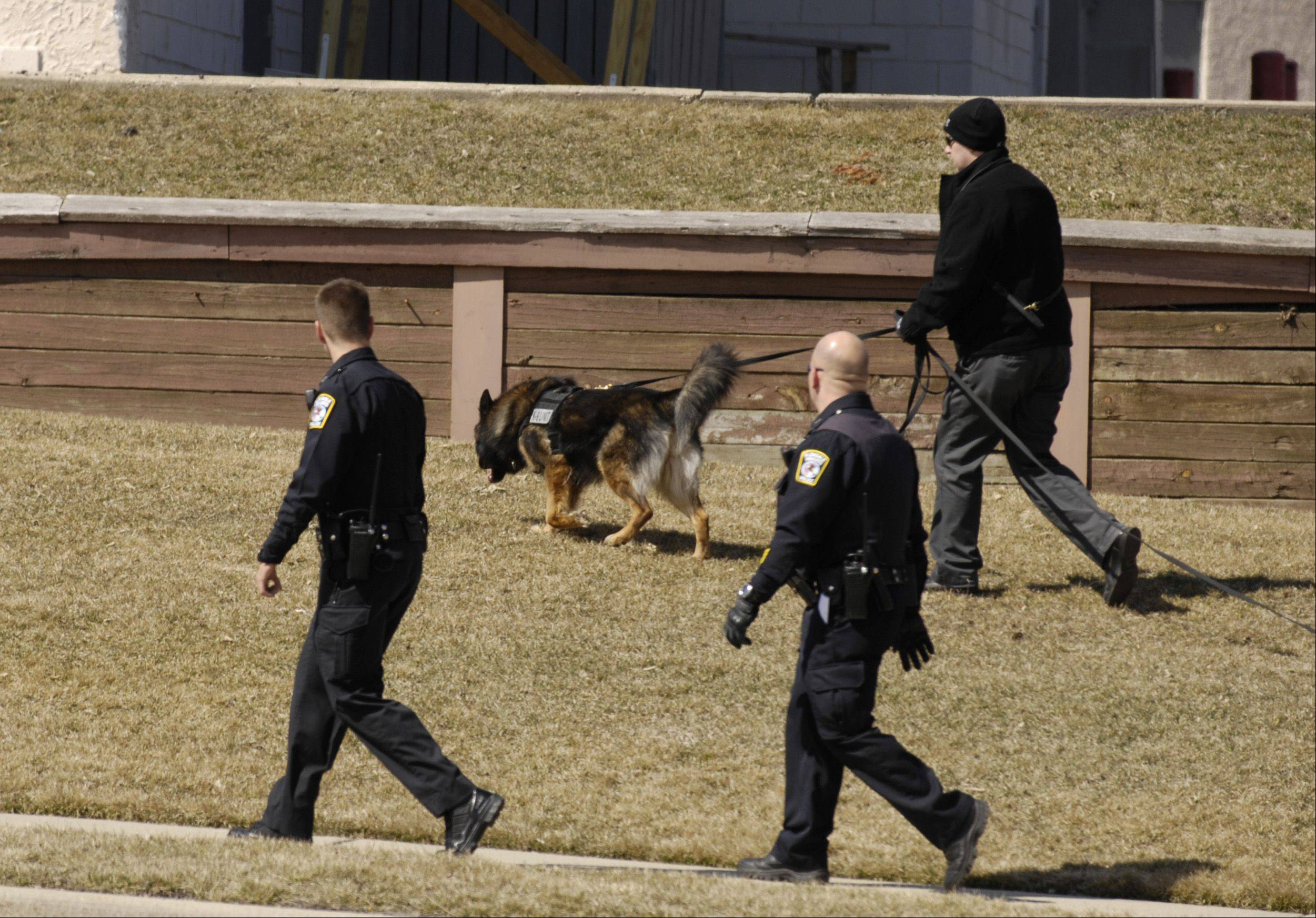 Glendale Heights police use a canine unit to search a nearby neighborhood and strip mall Monday during an investigation of a robbery at the Chase Bank branch at Army Trail and Bloomingdale roads.