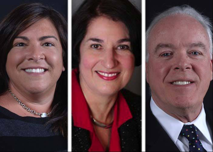 Lake Zurich mayoral candidates weigh in on incentives for development