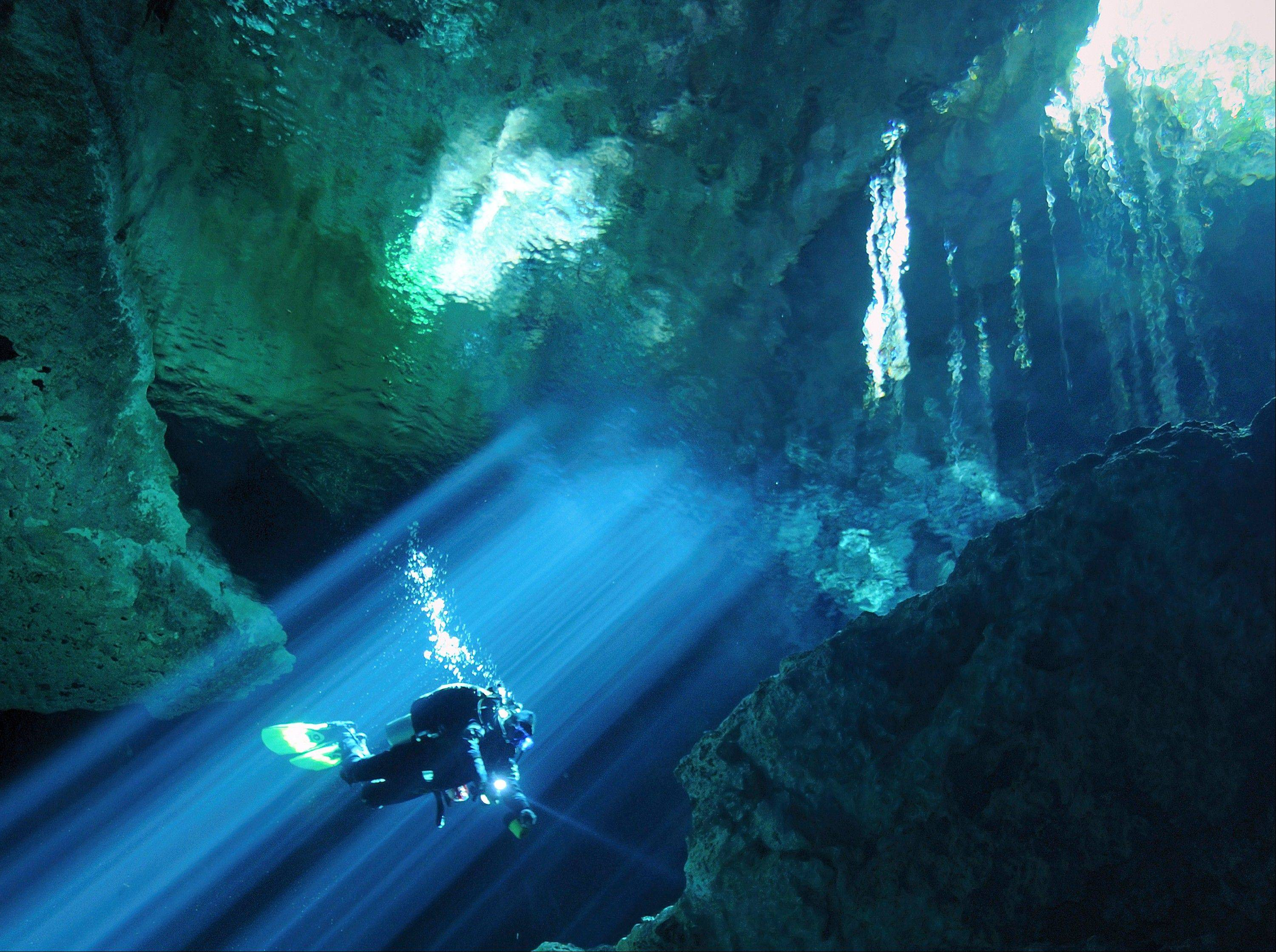 """Underworld,"" where divers explore underwater caves around the world, is one of 11 news shows on Animal Planet."
