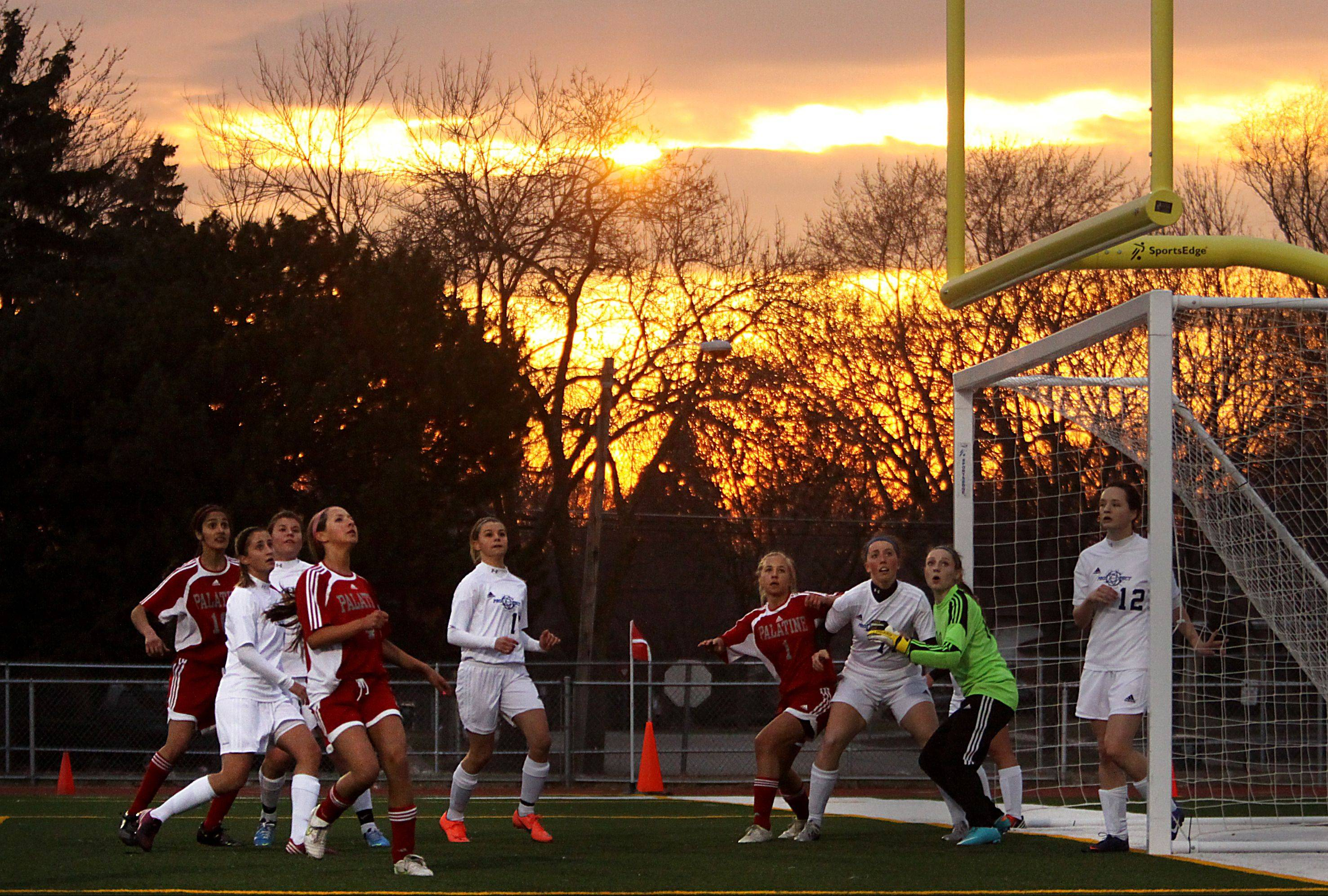 Prospect and Palatine players prepare for an incoming corner kick at the Prospect goal during Thursday evening's game at George Gattas Memorial Stadium at Prospect.