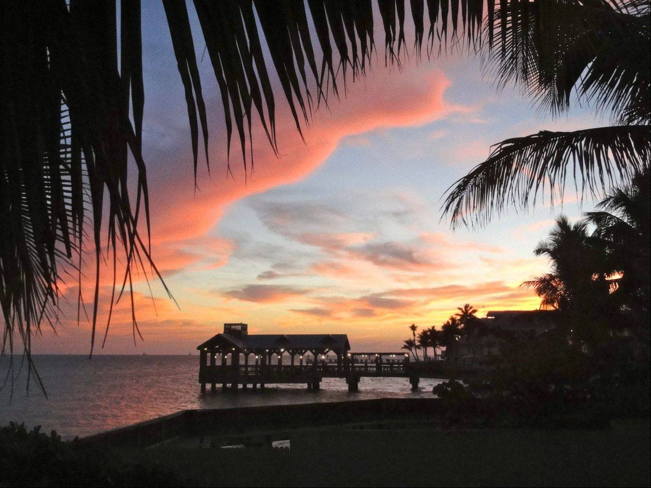 While enjoying dinner in Key West, I had a perfect sunset view. I thought the colors were lovely and enjoyed seeing them change by the minute. The palm trees and dock made a perfect contrast, so after watching the nature show for a time, I finally snapped this picture.