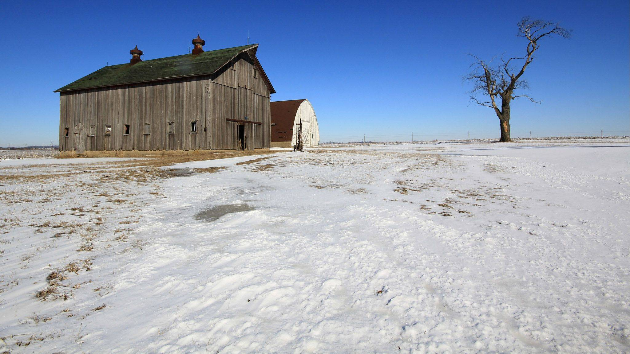 This is a barn along Illinois 72 close to Genoa, Illinois. The shot was taken on a beautiful winter day with a gorgeous blue sky. I really like the old barn and the lone tree against the snow covered landscape.