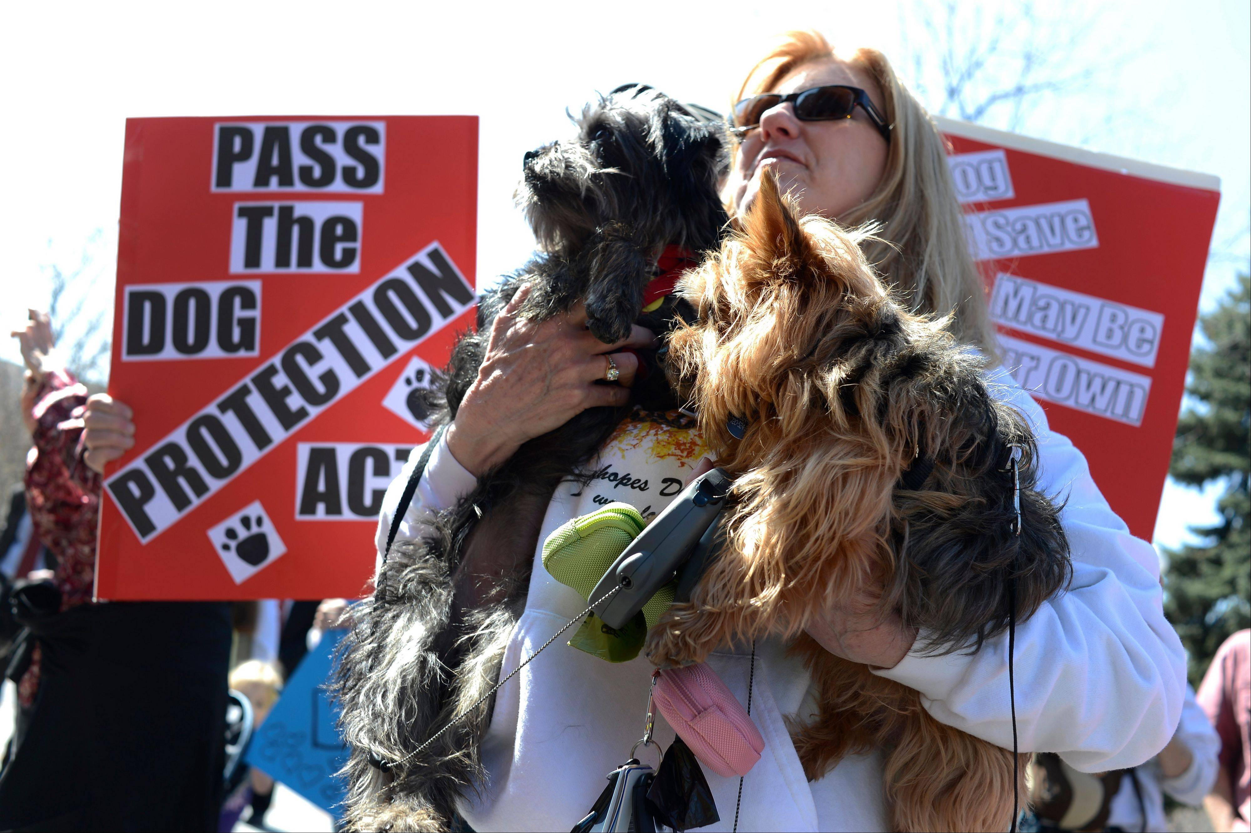 Julie Hanan, holding her dogs Murphy and MacKenzie, listens to Sen. Dave Balmer during a rally in support a bill to train officials on how to handle canine encounters.
