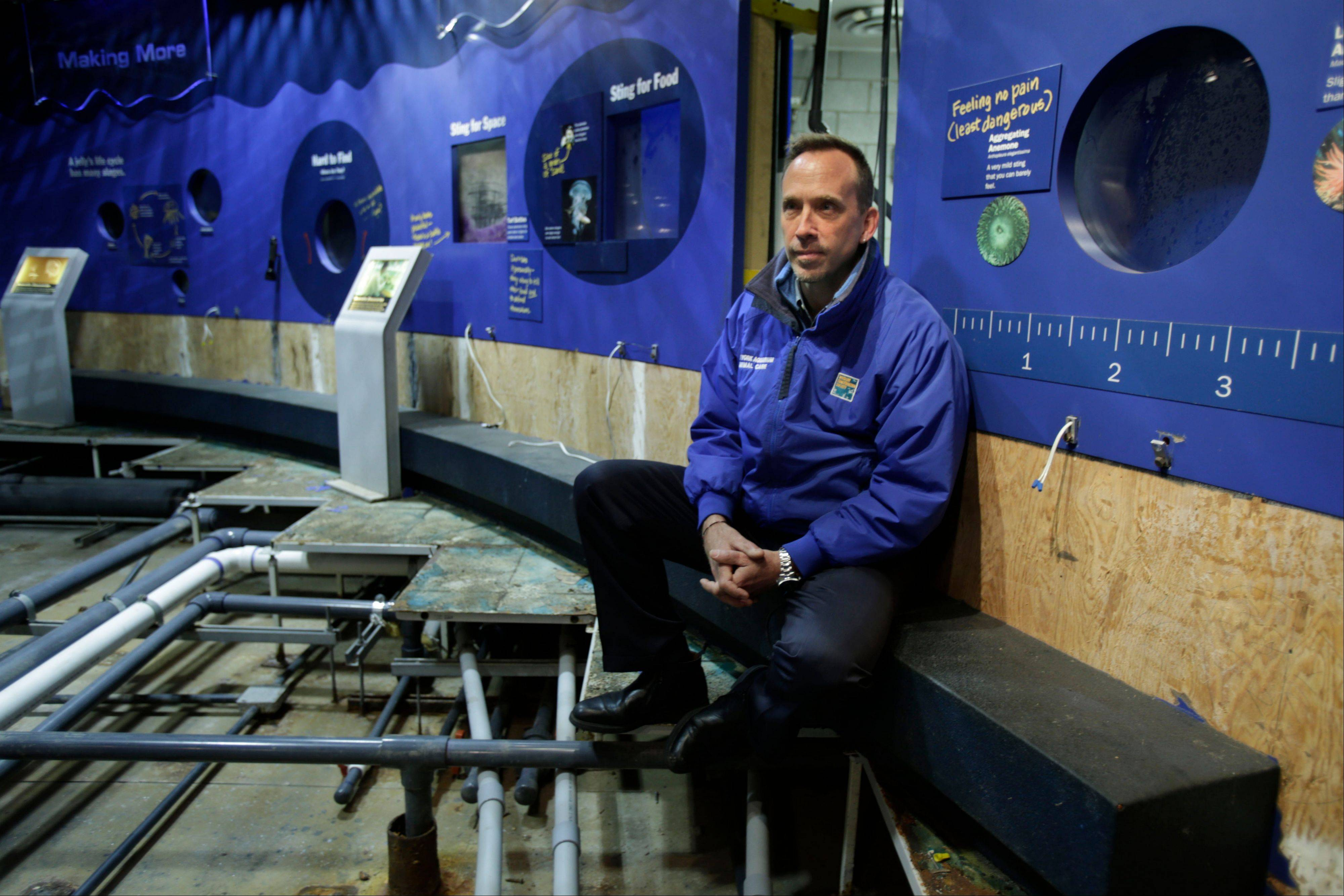 Director of the New York Aquarium, John Dohlin at an exhibit ruined during Superstorm Sandy at the aquarium on Coney Island.