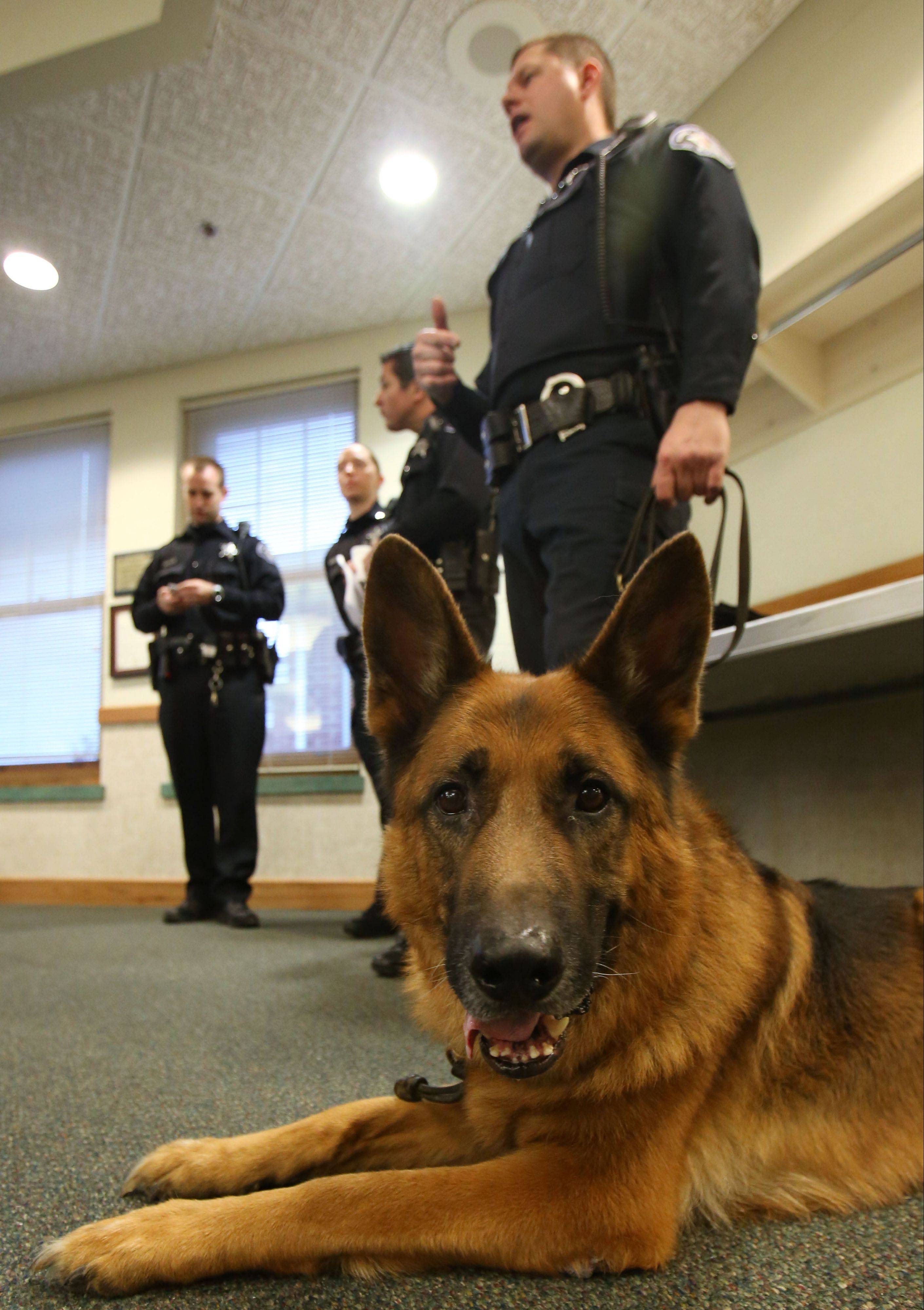The Village of Round Lake Beach retired K-9 Gunnar from the police department Monday night at village hall. Gunnar has served the village for the last 7 1/2 years working with handler Officer Ken Rydz. Rydz now takes ownership of Gunnar.