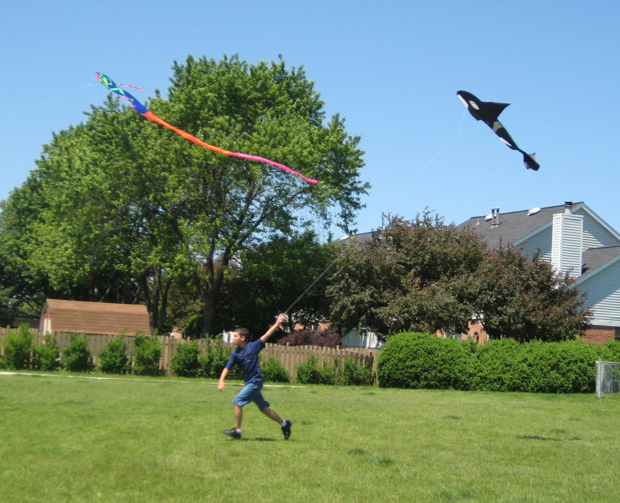 A child flies a kite at a past Flying 4 Kids event.