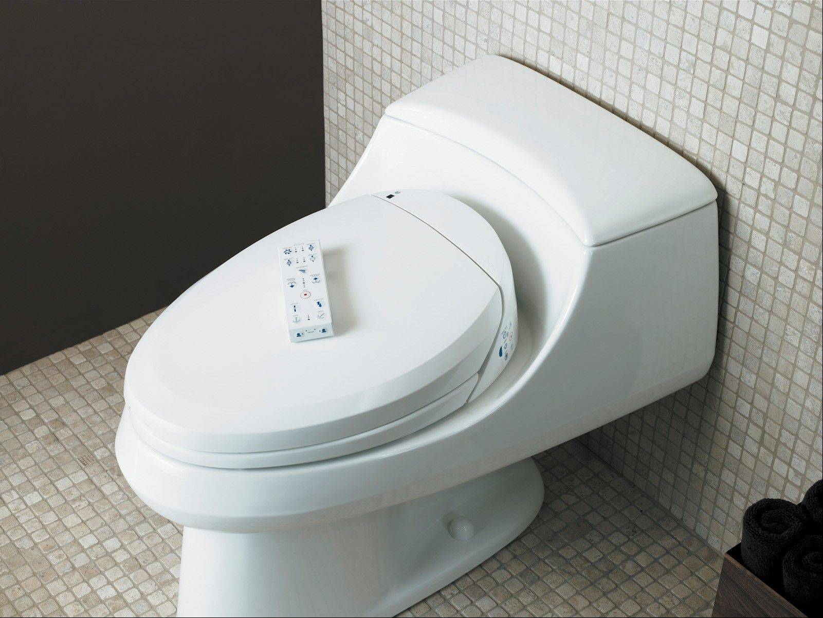 To solve a space issue in your bathroom, a bidet seat can create a plumbing fixture that does double duty in a single space.
