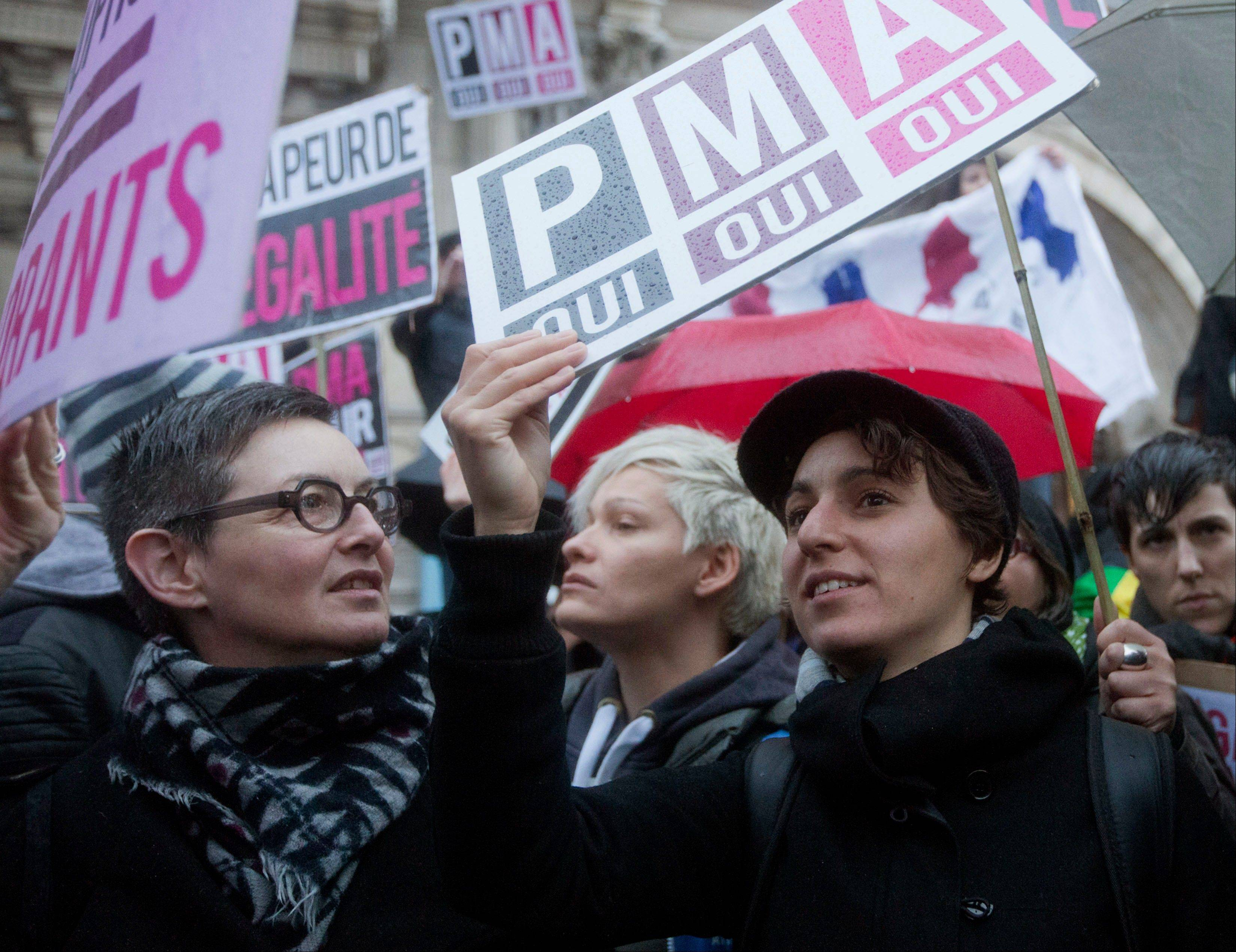 People demonstrate against for equal rights with placards and flags in Paris. Wednesday, April 10, 2013. The French Senate voted Friday to legalize same-sex marriage in France, putting a landmark bill on track to become law by summer.