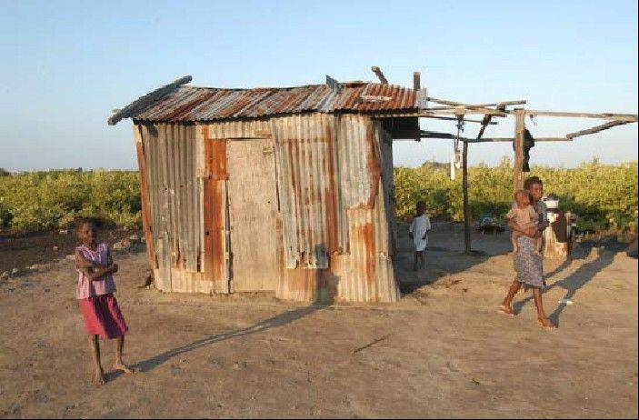 Many houses in Haiti are made of scrap metal or sticks.
