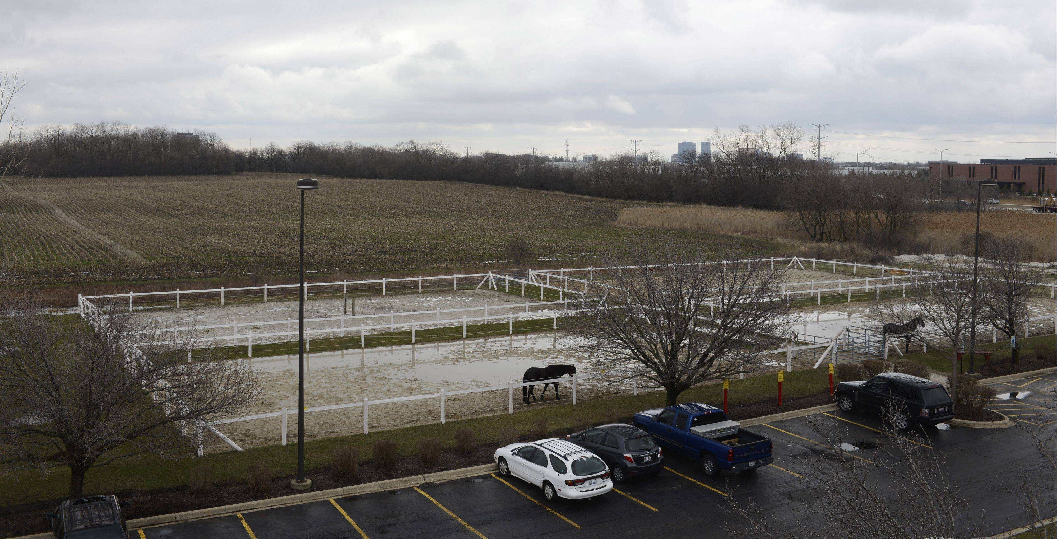 Schaumburg officials Tuesday will consider a resolution to build a connecting road and annex 80 acres north and east of Medieval Times for Japanese firm Sunstar Americas Inc. to build a new plant. The property is owned by the Archdiocese of Chicago.
