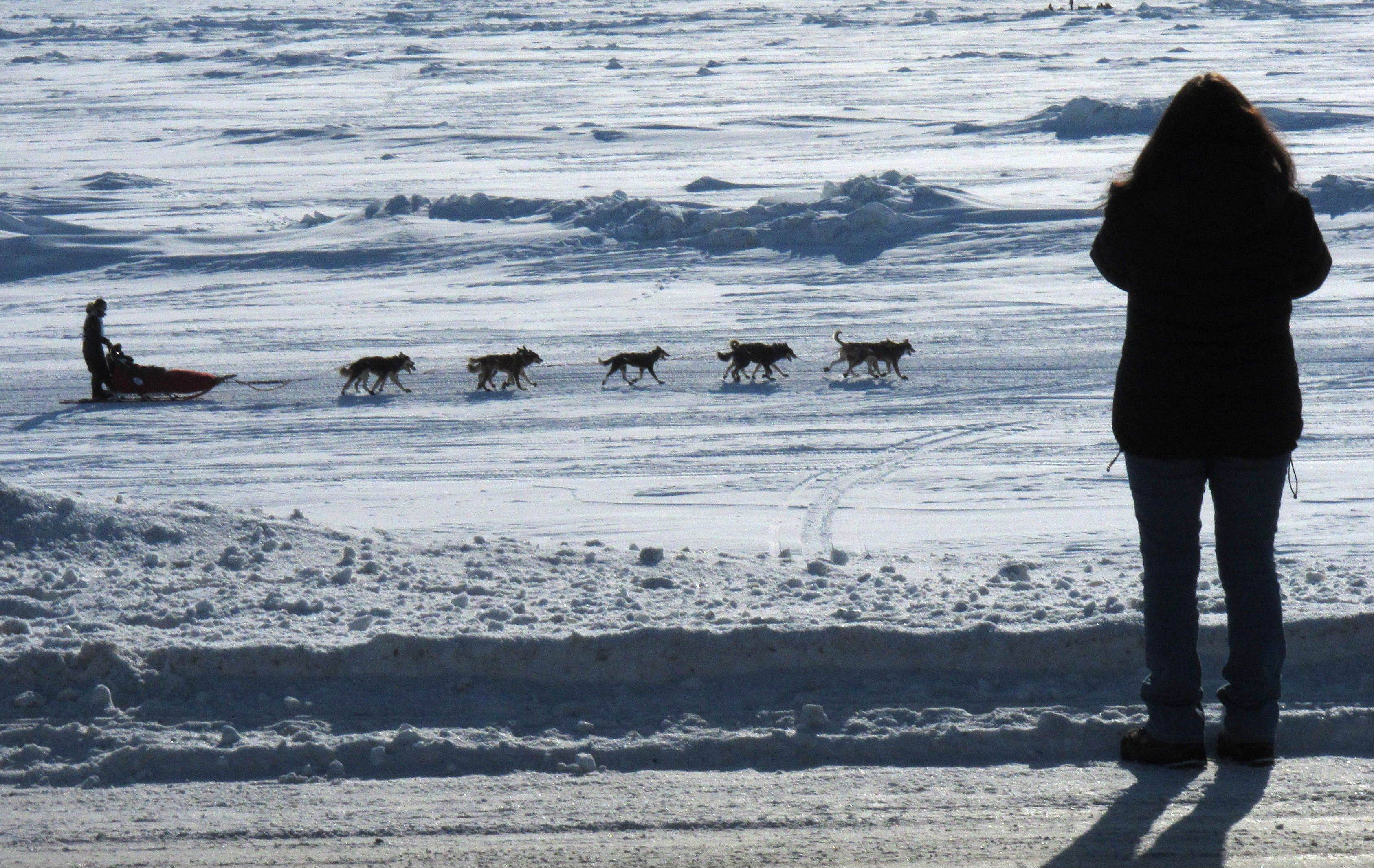 A woman stands on the side of the road outside the city, taking photos of musher Michael Williams Jr. as he nears the finish line in Nome, Alaska.
