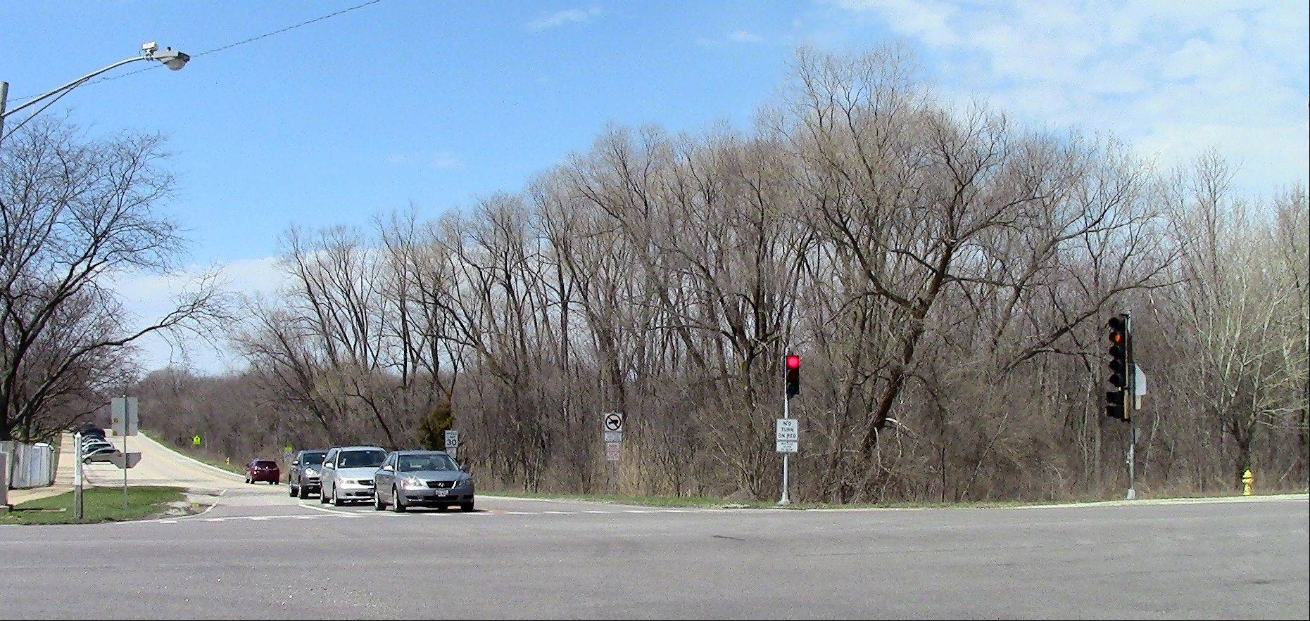 A developer is proposing to build 23 houses on nine acres at Route 53 and Sheehan Avenue in Glen Ellyn. But a majority of the village board says the project as proposed is too dense.