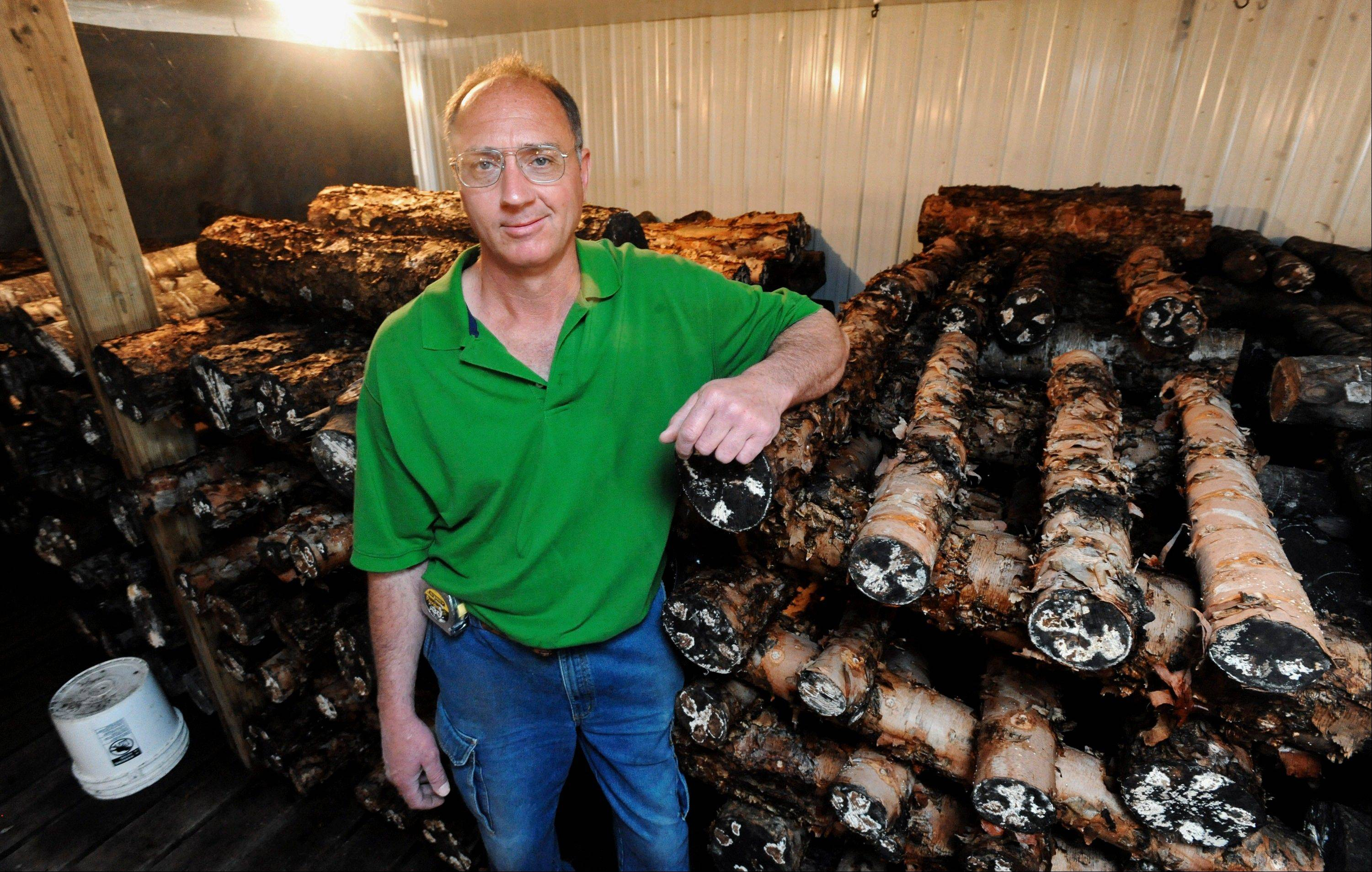 Dennis Vahling with some of the logs in the mushroom barn at Vahling Vineyards near Stewardson.