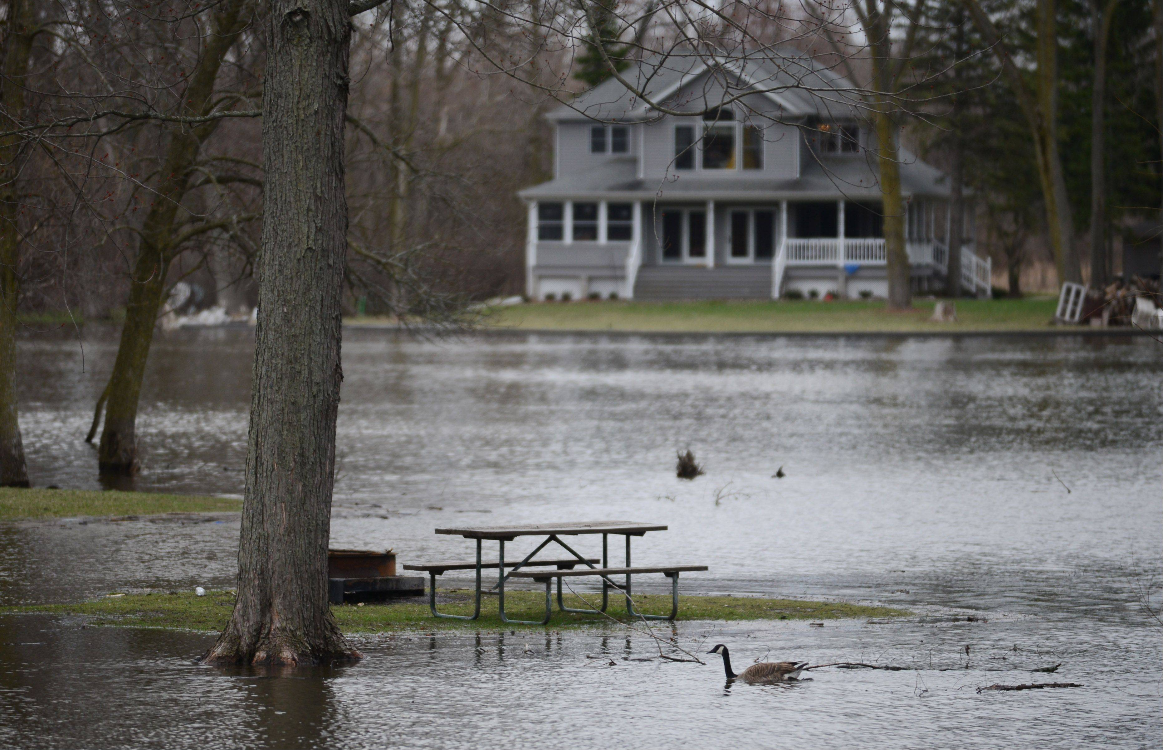 Rising Fox River waters consume picnic areas at the McHenry Dam State Park Wednesday.