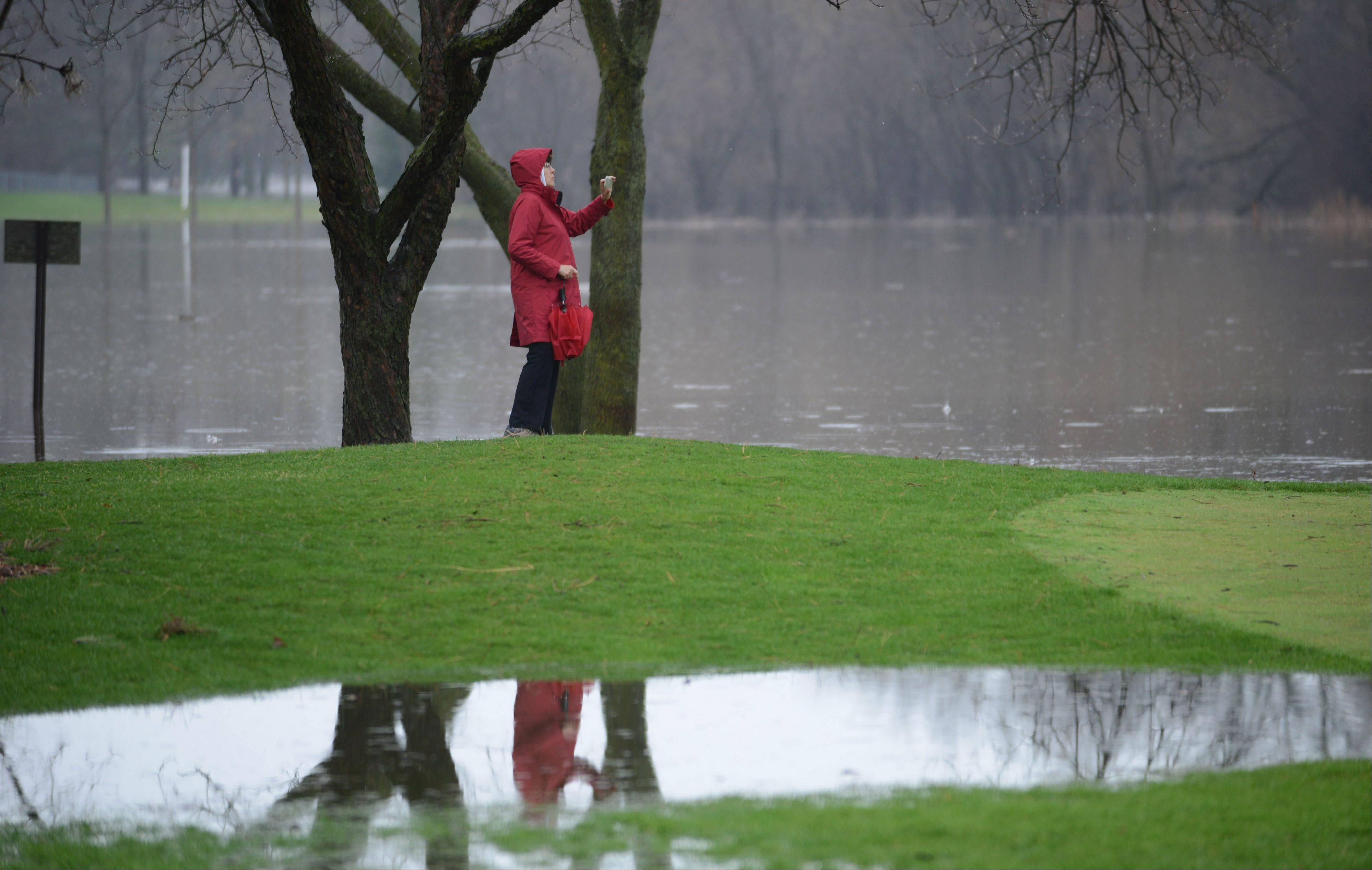 Libertyville resident Nancy Giardina takes photos of the flooded Libertyville Golf Course along Country Club Drive Thursday morning. The Des Plaines River runs alongside the course.