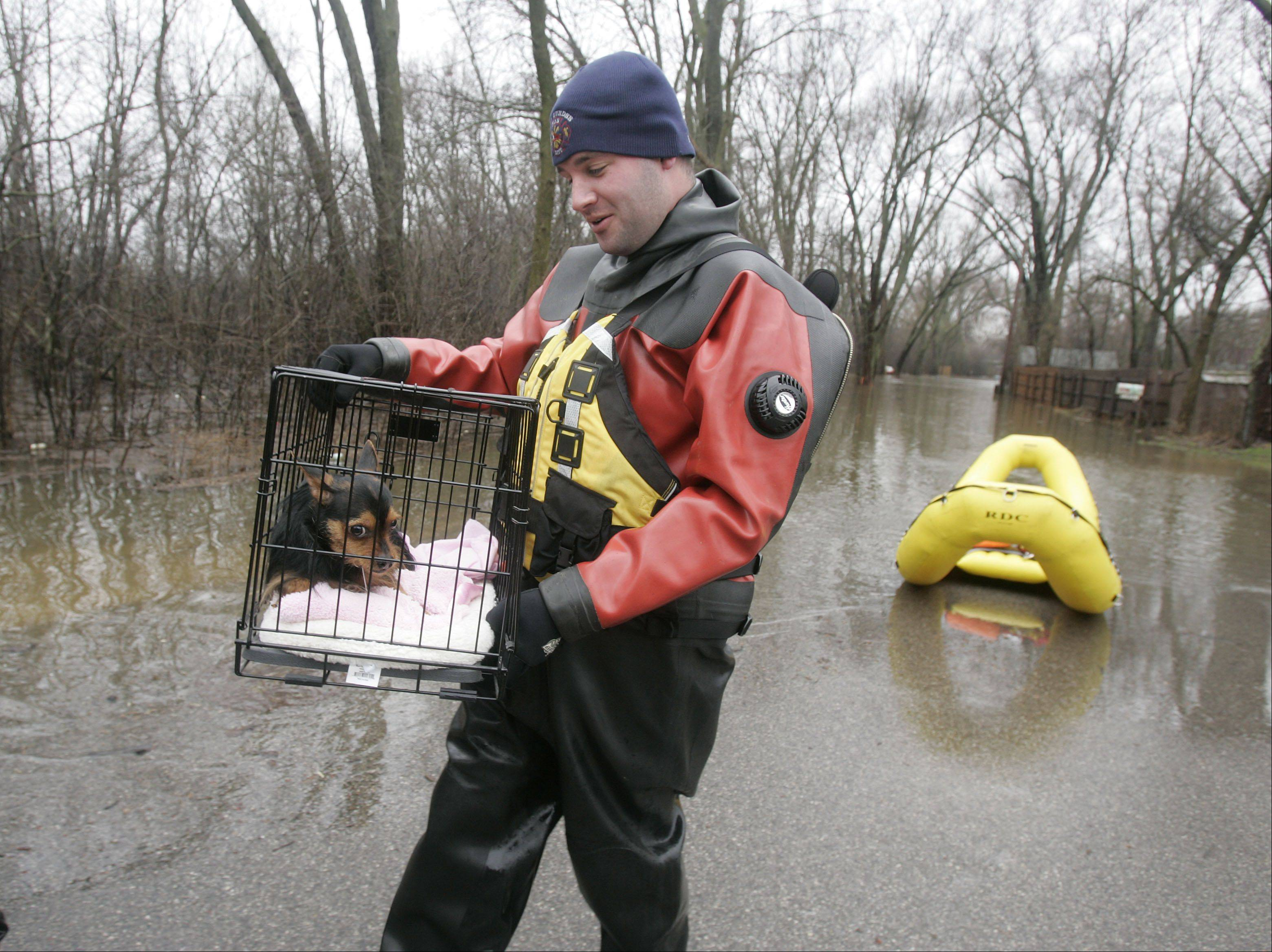 "Nick Beauchaine, a firefighter with the East Dundee Fire Protection District, carries a scared Roxi after he helped her owner, Barrie Komorski, evacuate her home in the Richardson subdivision Thursday. ""We're fine,"" Komorski said. ""That was Roxi's first boat ride."""