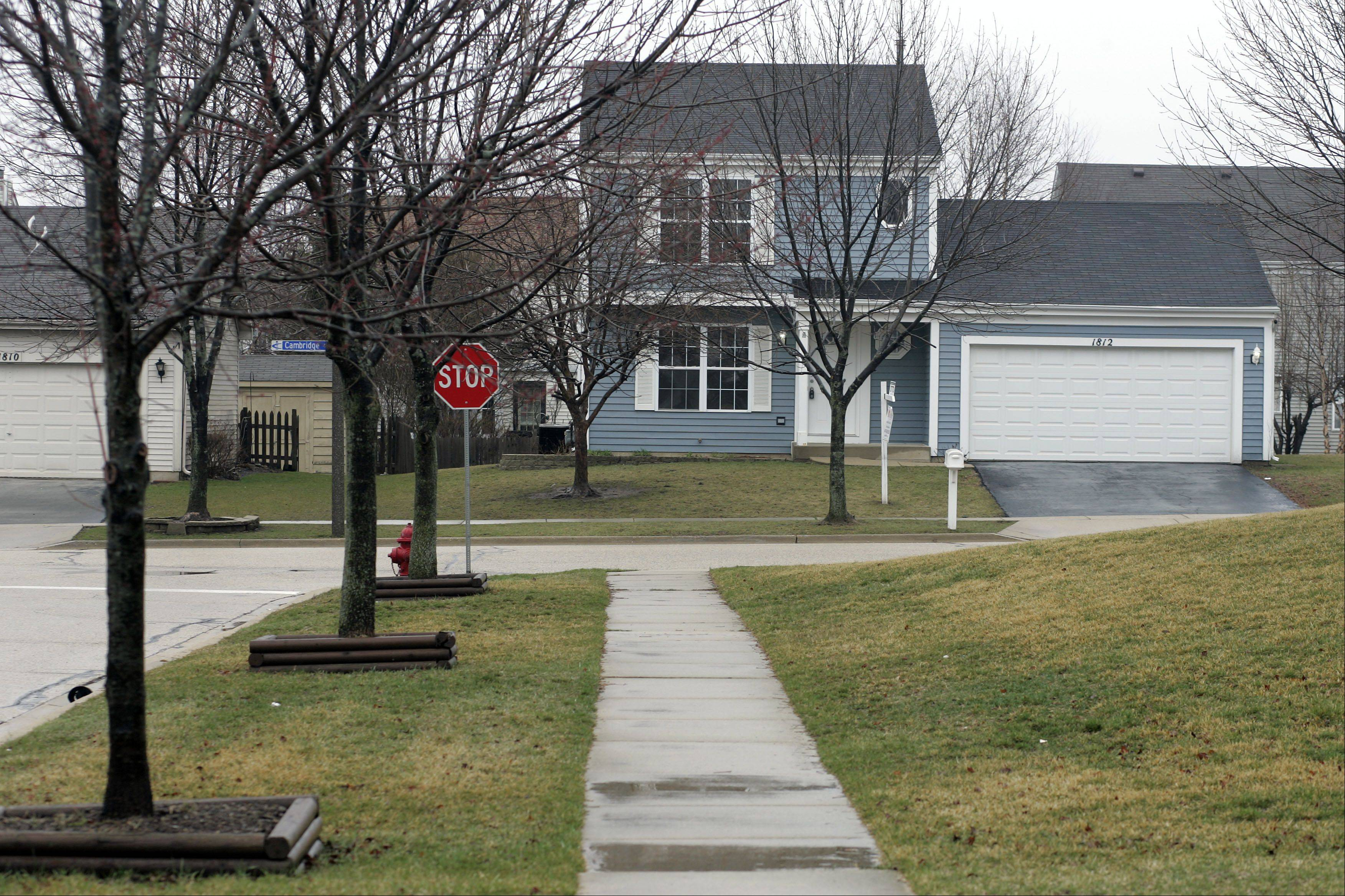Carpentersville's Meadowdale subdivision began with about 700 homes built in the mid-1950s.