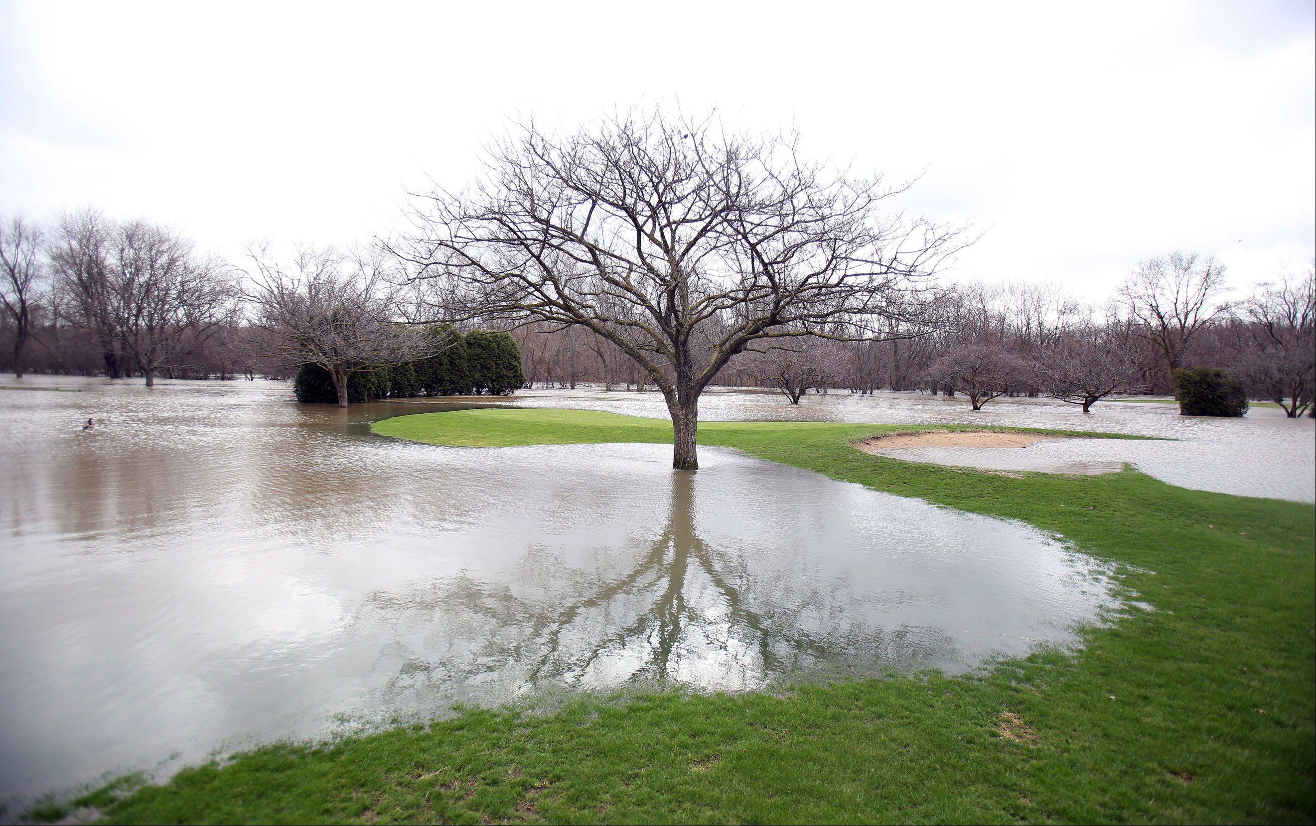 Much of the Riverside Golf Course in Libertyville is under water as the Des Plaines River overflowed its banks Friday morning