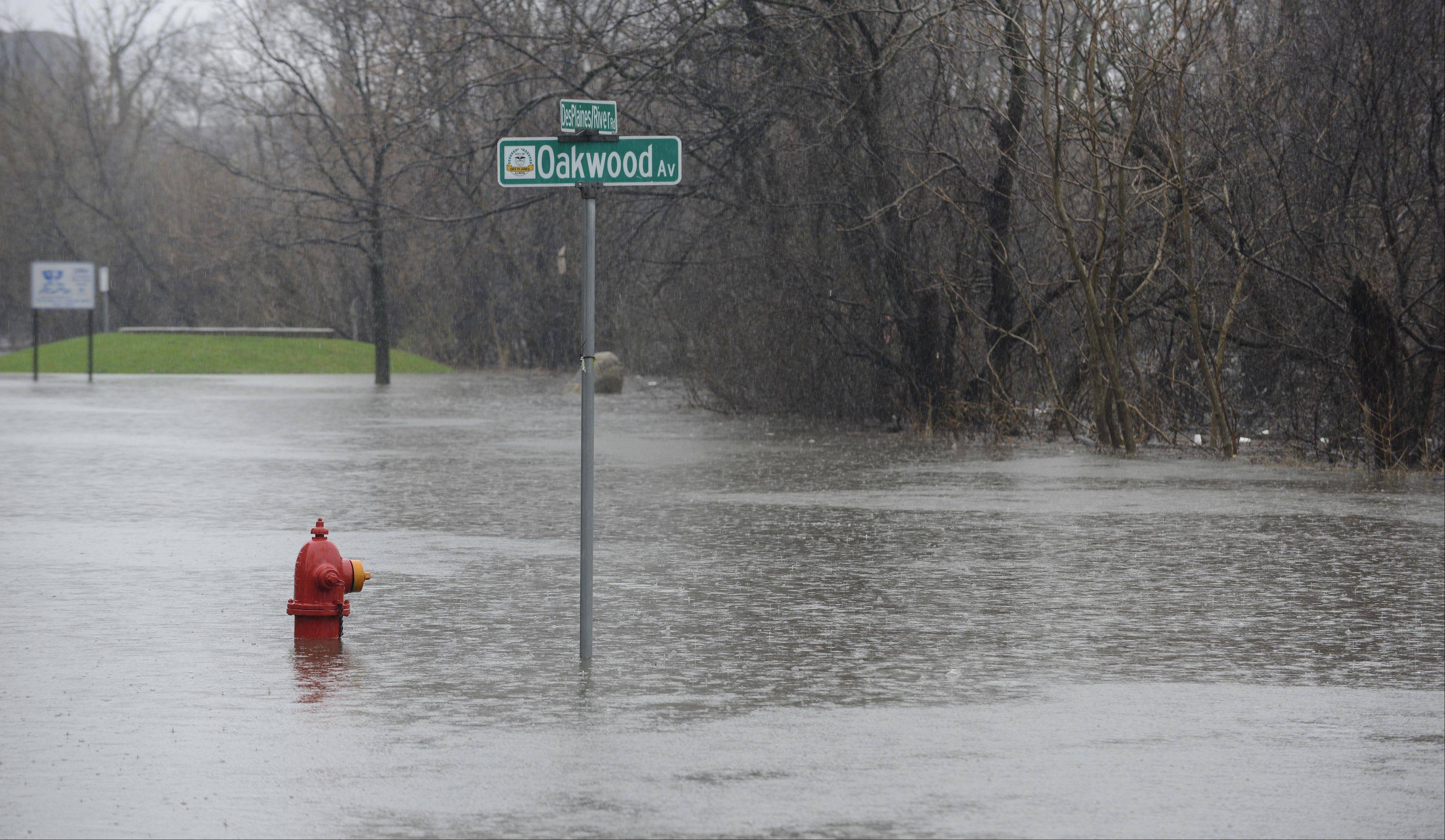 Des Plaines River Road at Oakwood Avenue is closed south of downtown due to flooding yesterday -- and the Des Plaines River was not yet at its worst.