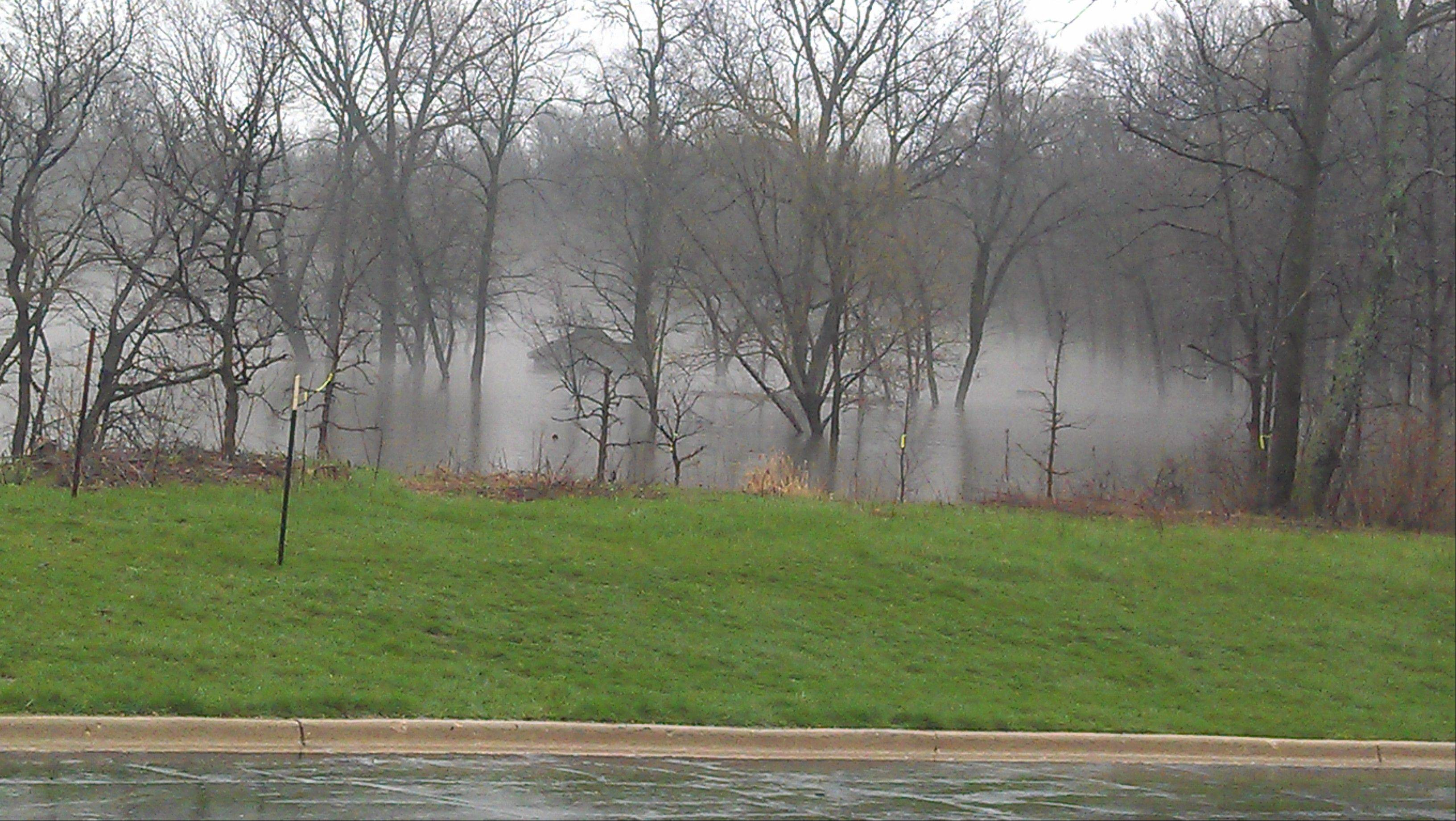 Flooding at the McDowell Forest Preserve.