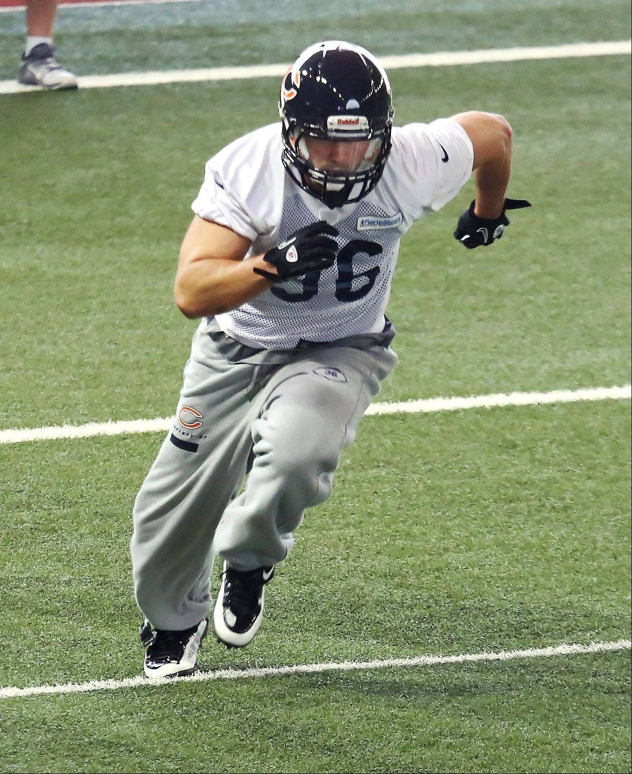 Safety Tom Zbikowski, of Buffalo Grove, works out during Bears minicamp at Halas Hall as he prepares to earn a roster spot with his third NFL team.