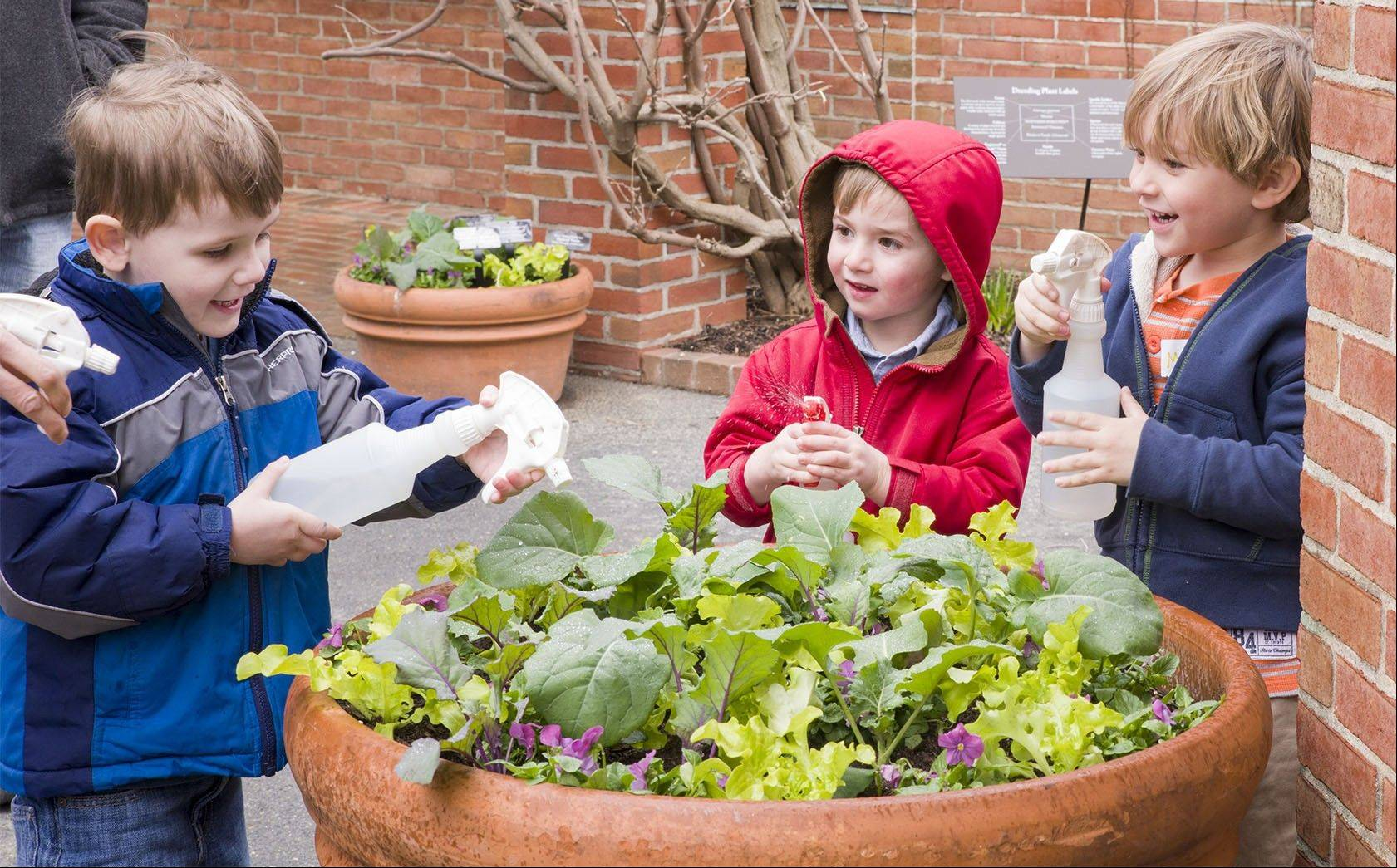Children can water the spring vegetable container gardens in the Regenstein Fruit & Vegetable Garden at the Chicago Botanic Garden.