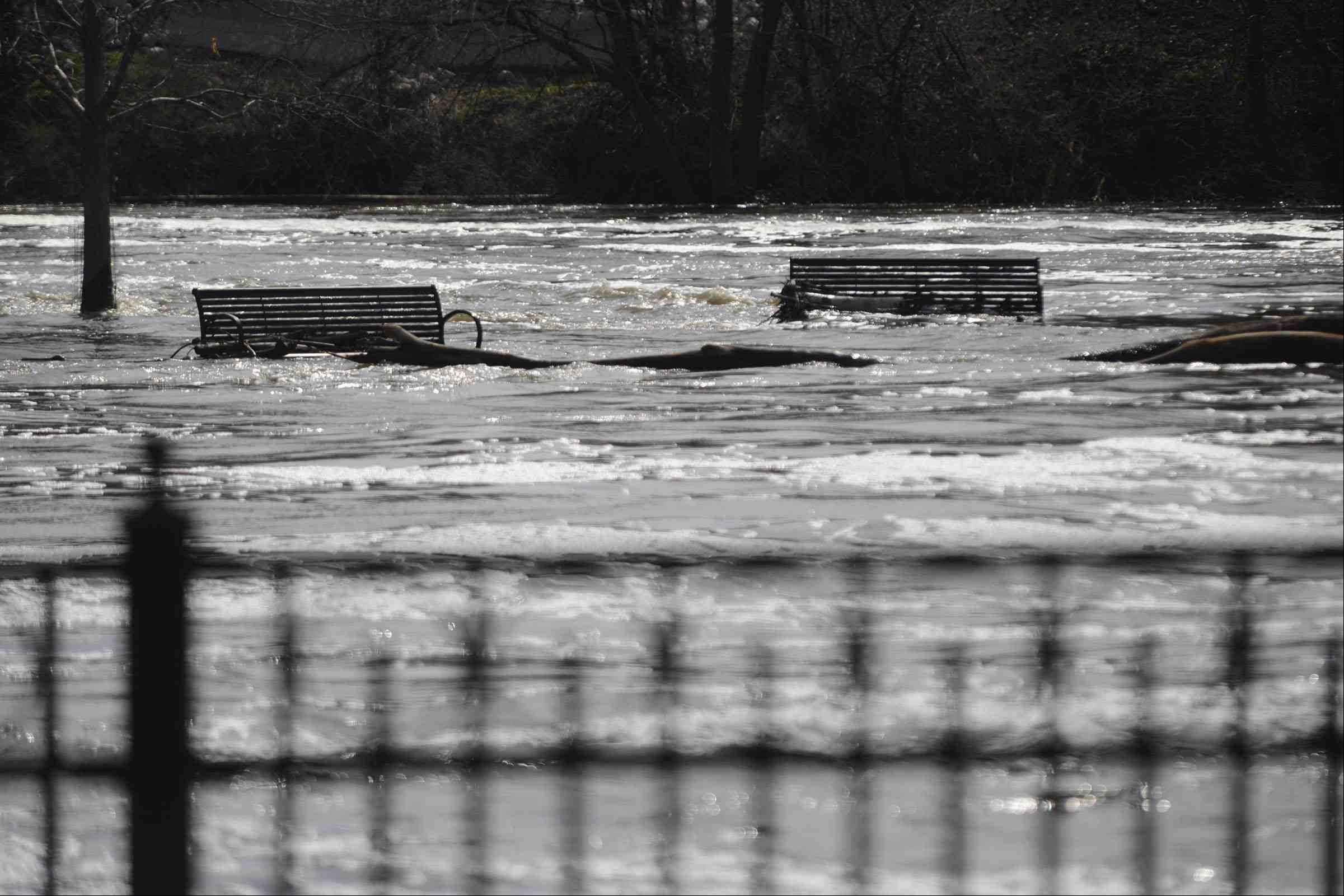 The water level Sunday nearly submerged the benches on closed Walton Island on the Fox River in Elgin.