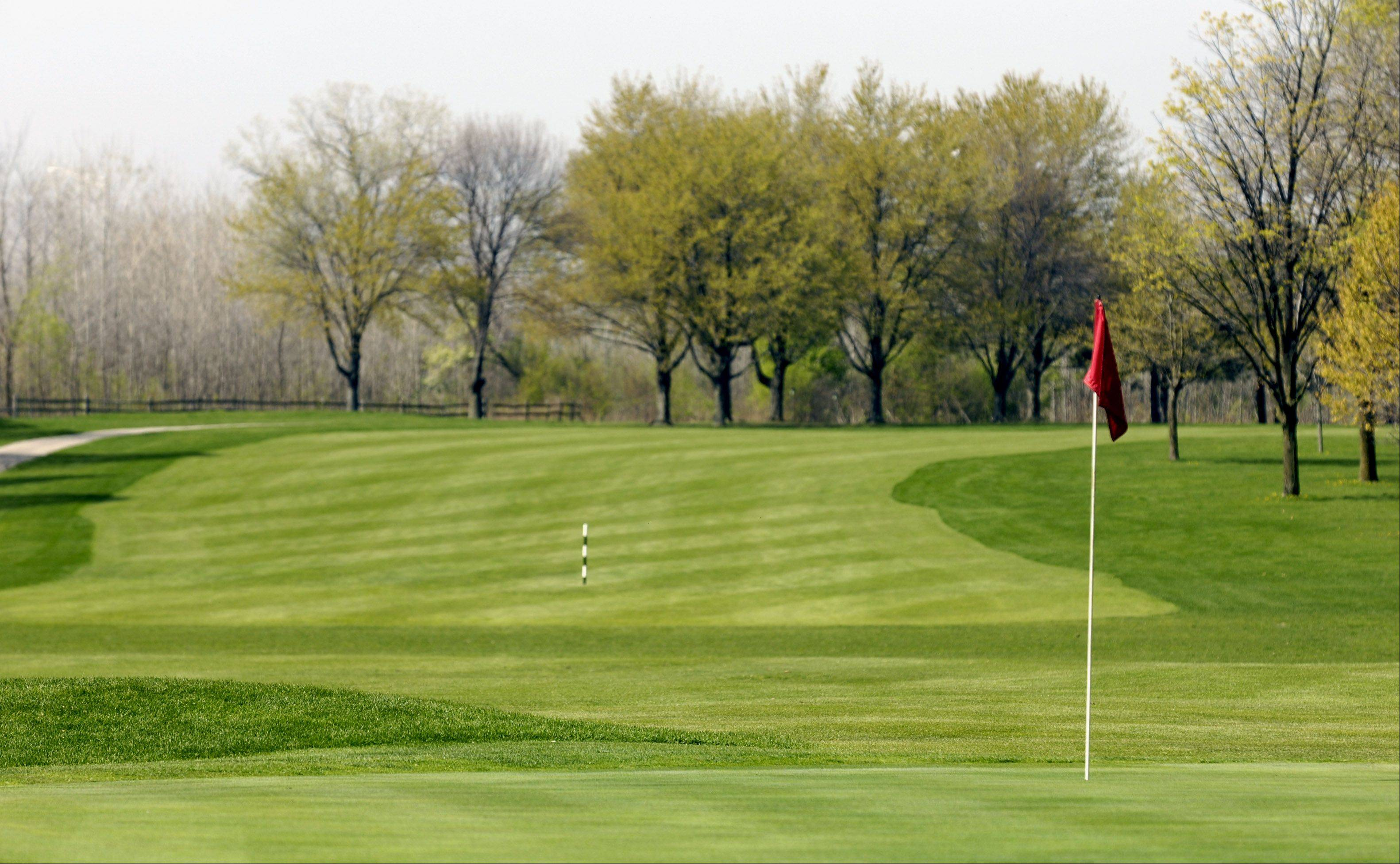 Oak Meadows Golf Club in Addison and two other courses owned by the DuPage County Forest Preserve District made a profit last year, officials said.