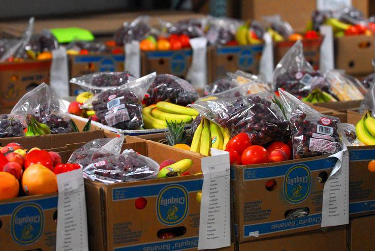 Fresh produce prepared to be distributed through HSP's Feed the Kids program, last summer.