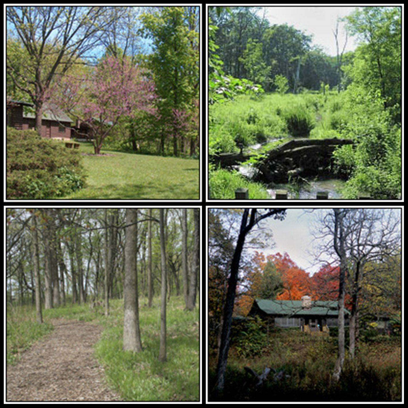 A Nature Walk with Sarah Schultz, habitat restoration volunteer for the Lake County Forest Preserve District and Reed-Turner Nature Preserve, will be May 4 at the Reed-Turner Woodland in Long Grove.