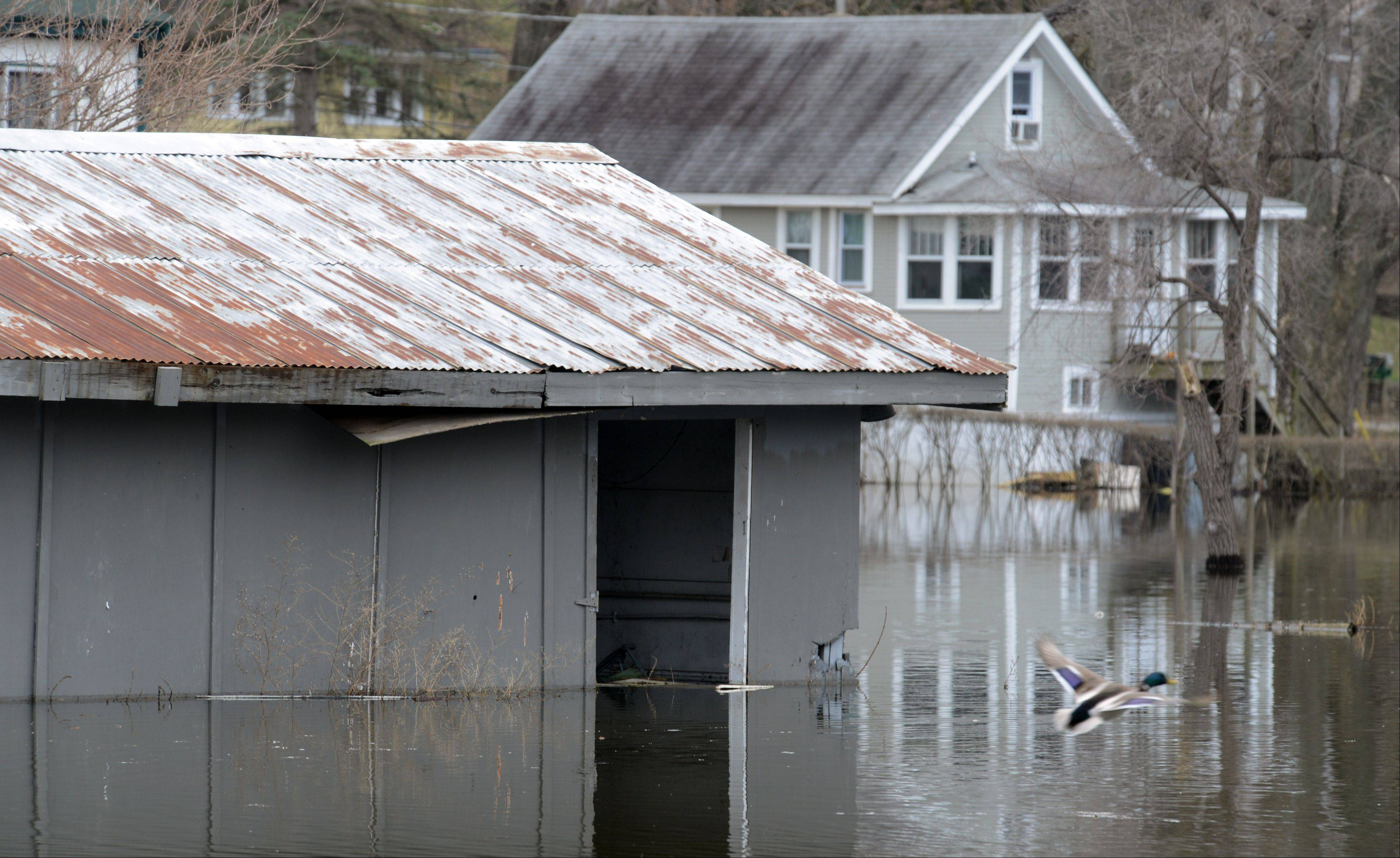 A flooded garage at a home along Holly Avenue in Fox Lake Tuesday.