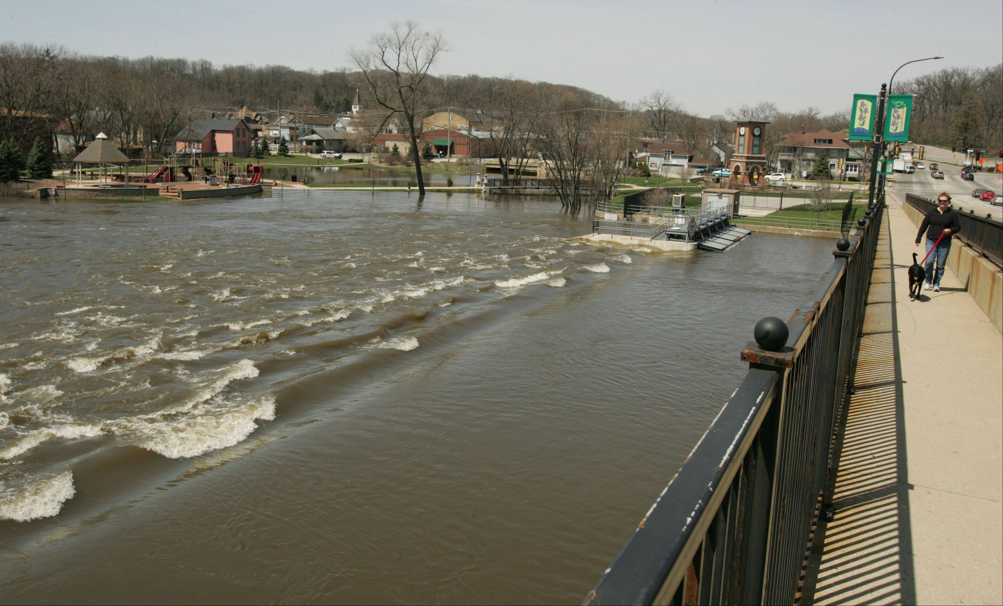 The Algonquin dam is only visible due to the waves created by water as the swollen Fox River rushes beneath Algonquin Road Monday morning.