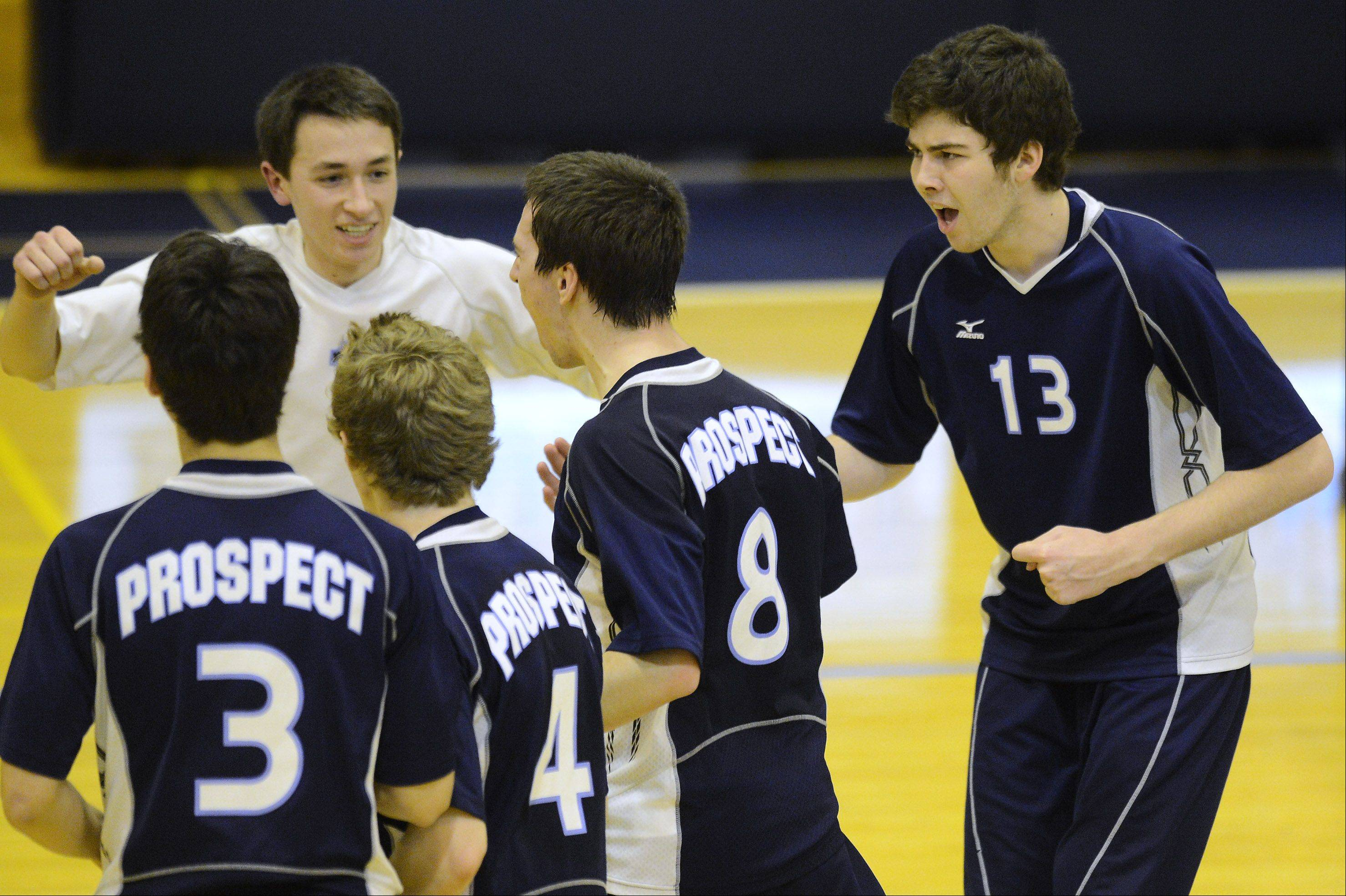 The Prospect boys volleyball team, including, in white, Ryan Maloney, and Kyle Formanski, right, and Jacob Schwister (3), Mark Mir (4), and Curtis Glennon (8) celebrates its victory over Buffalo Grove on Tuesday.