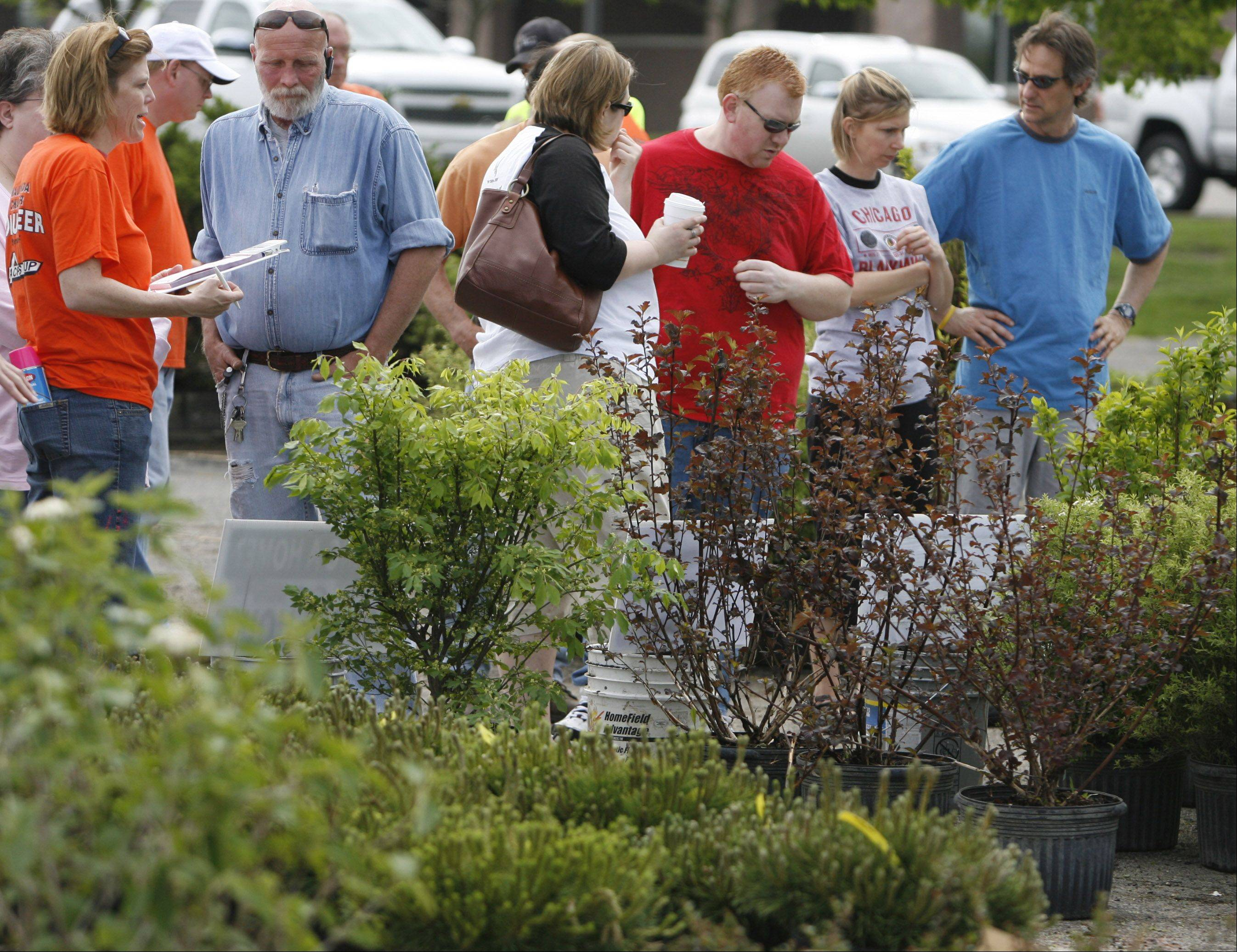 Shoppers look over the plants for sale at the fifth annual Wauconda Area Chamber of Commerce Tree and Shrub Sale in 2010. The next sale will take place from 9 a.m. to 2 p.m. Saturday, April 27, in the parking lot of Acres Group, 610 W. Liberty St., Wauconda.