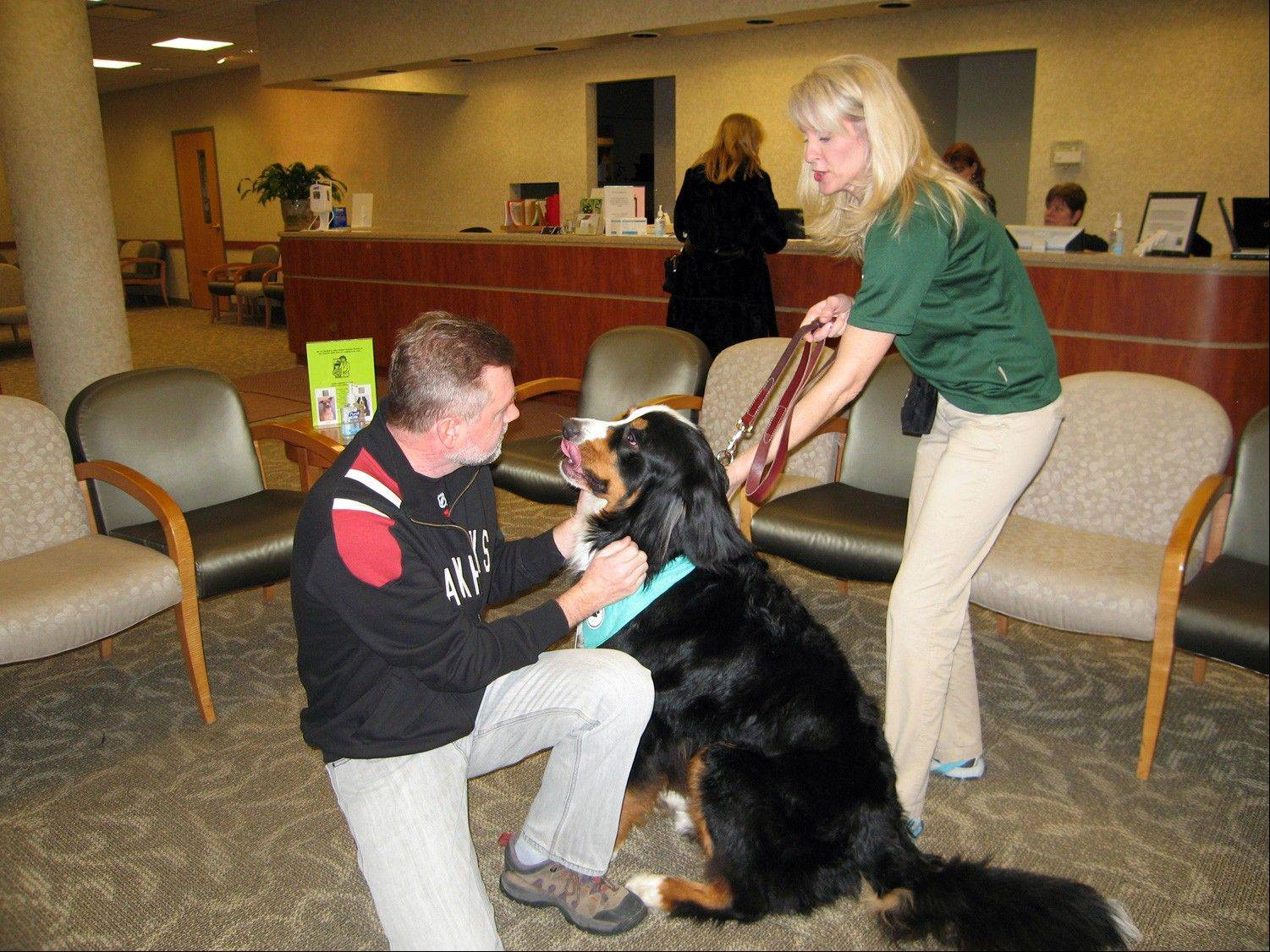 Jasper, a therapy dog, welcomes a patient at the NCH Medical Group office in Arlington Heights.