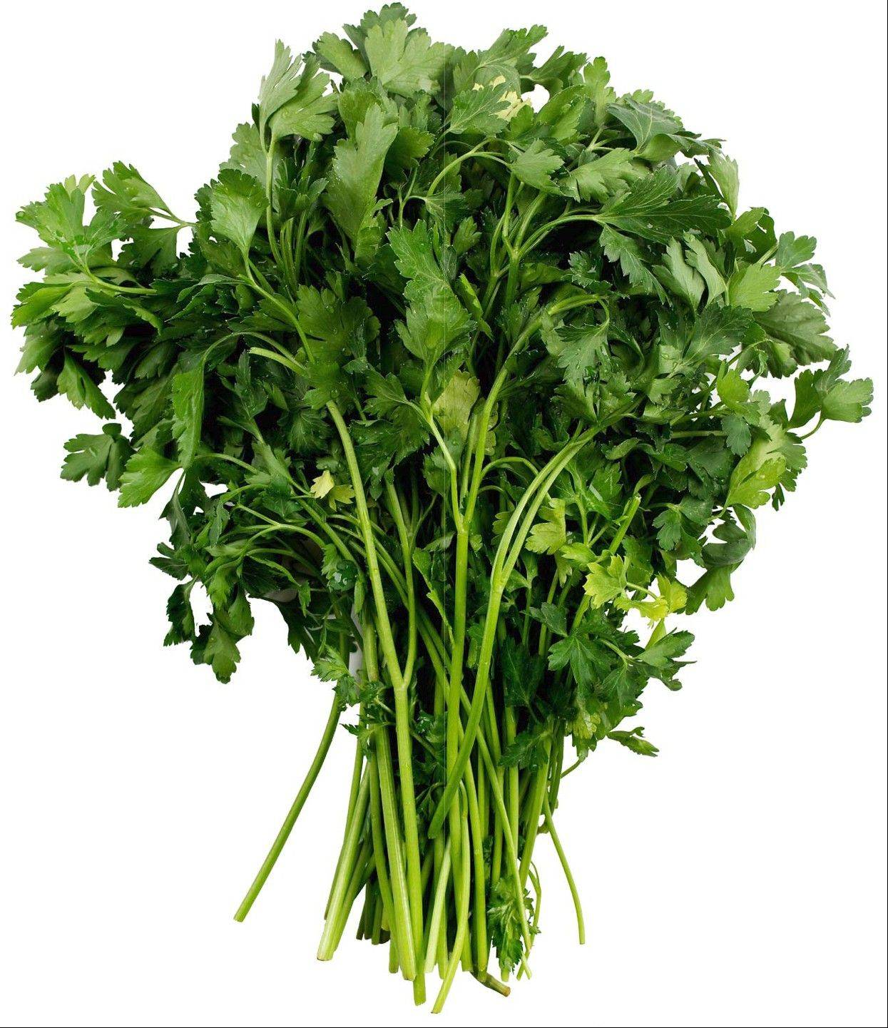 Flat or curly, parsley deserves a starring